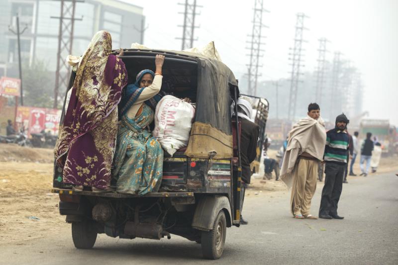 Hanging on! Agra, Uttar Pradesh, India