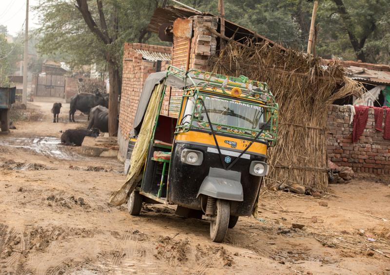 Tuk-tuk and cattle, Palwal, India