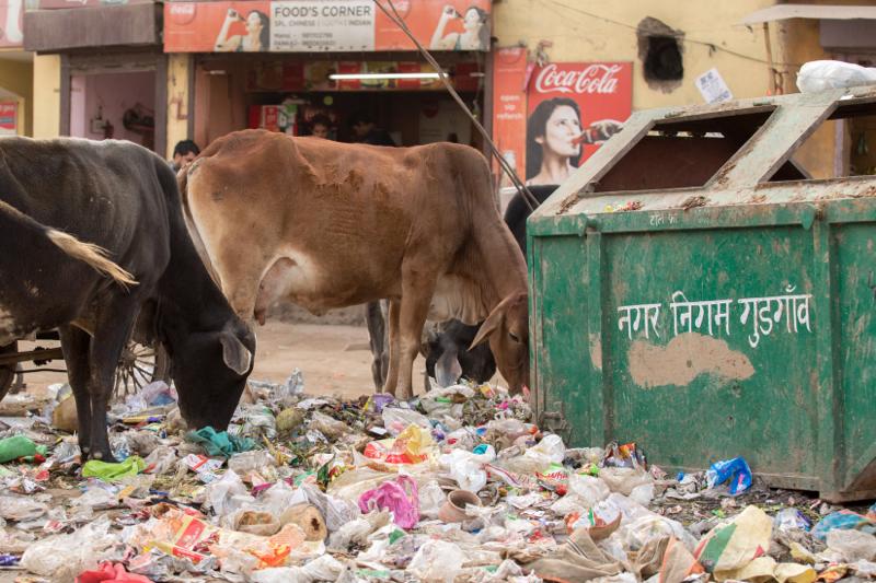 Empty skip!Peanut seller, Gargaon, Haryana, India