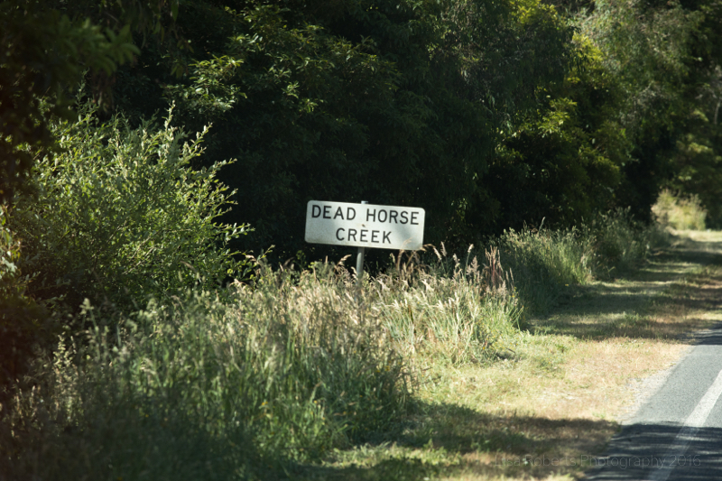 Dead Horse Creek,Victoria, Australia