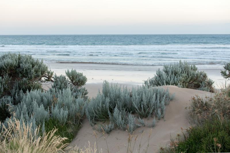 Beach along the Great Ocean Road, Victoria, Australia
