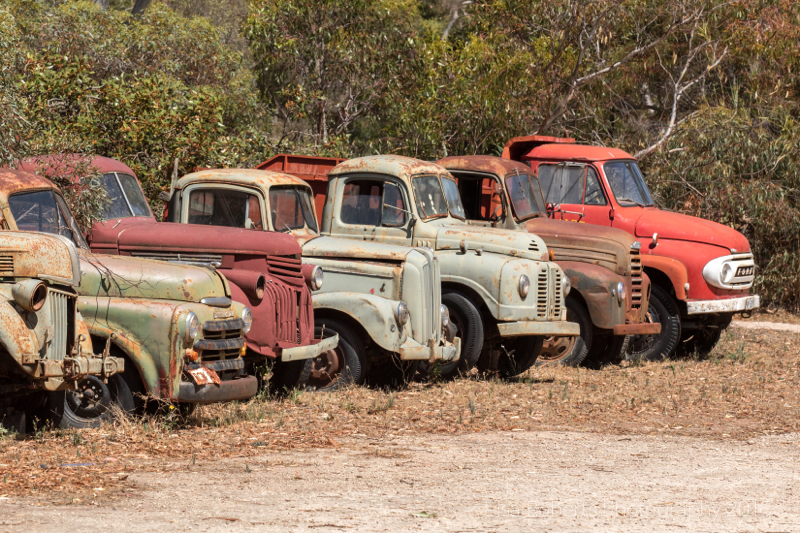 Vintage trucks at Old Tailem Town Museum, South Australia