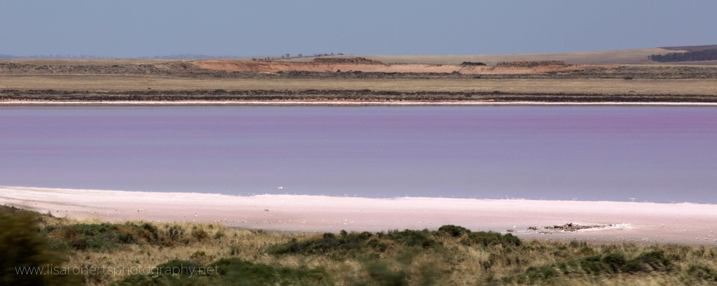 Pink Salt Lake, Lochiel, South Australia
