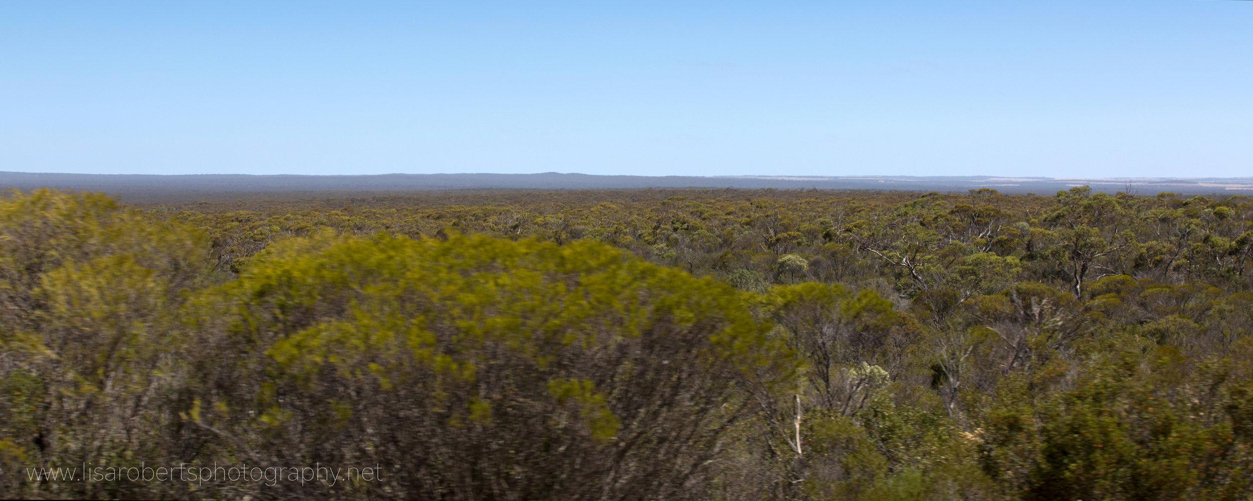 Australia,The Big Country!