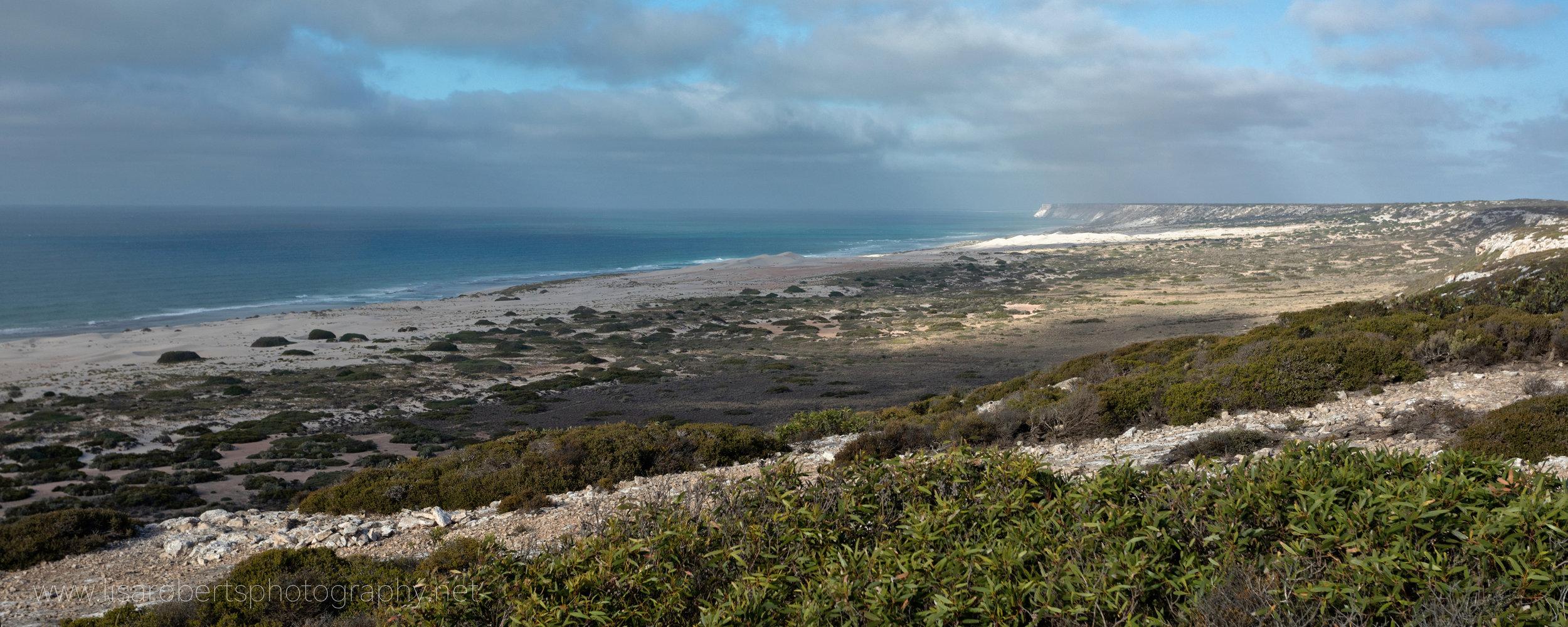 The Great Australian Bight, South Australia