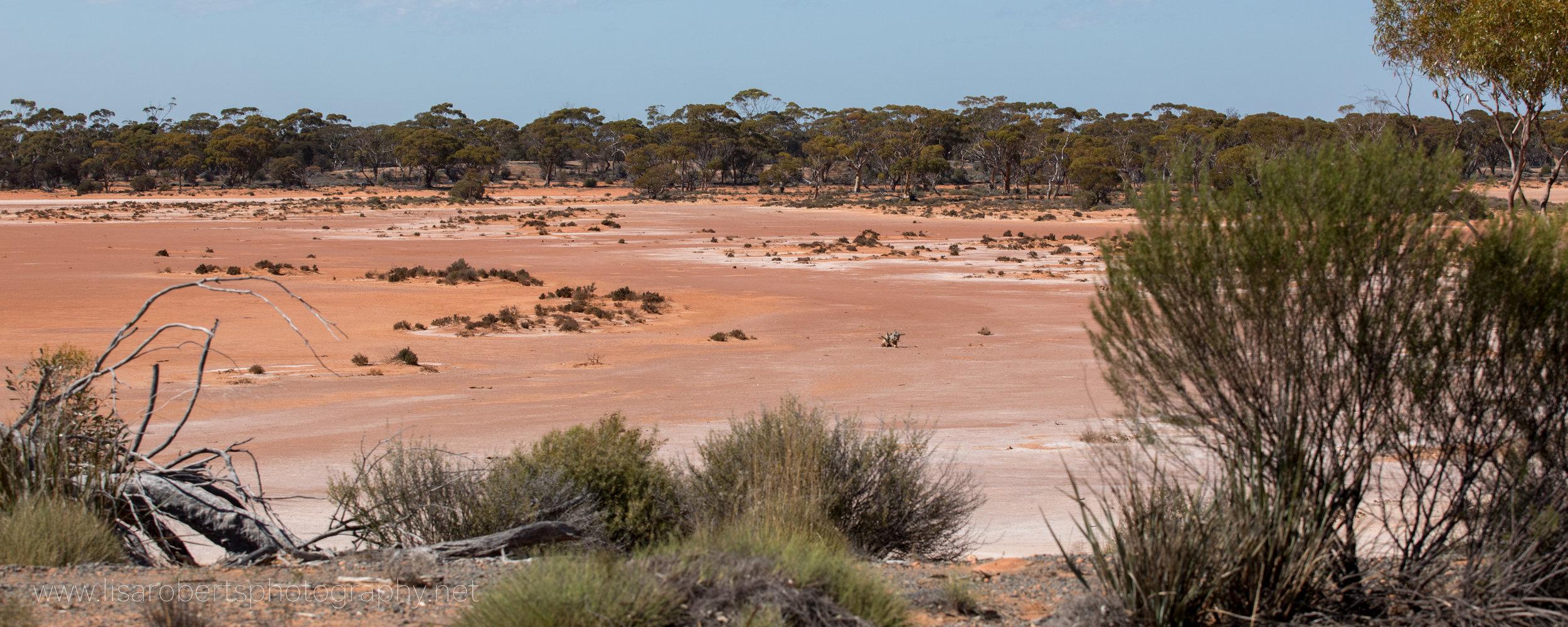 Red soil, Western Australia