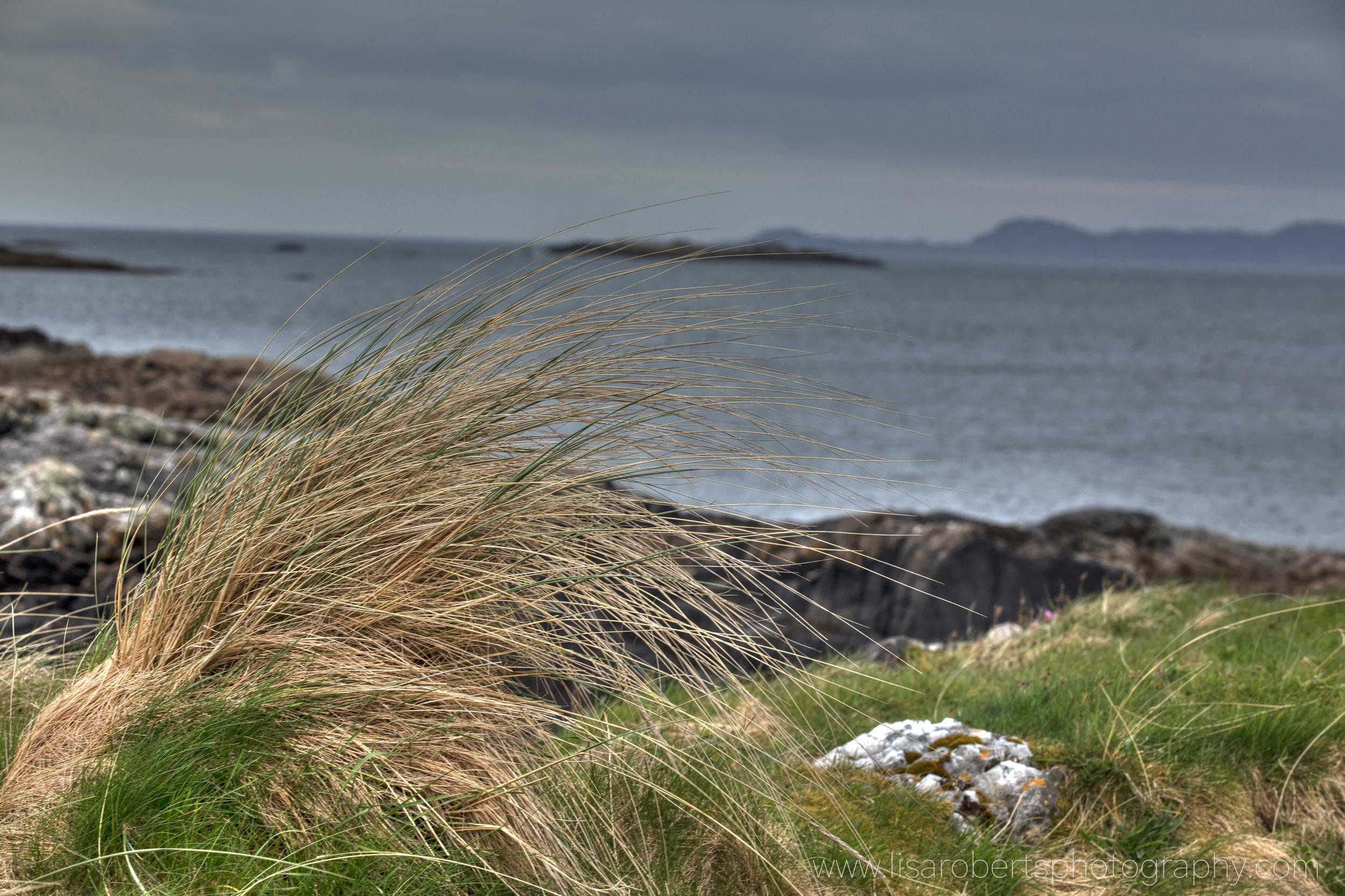Scotland 188.jpg