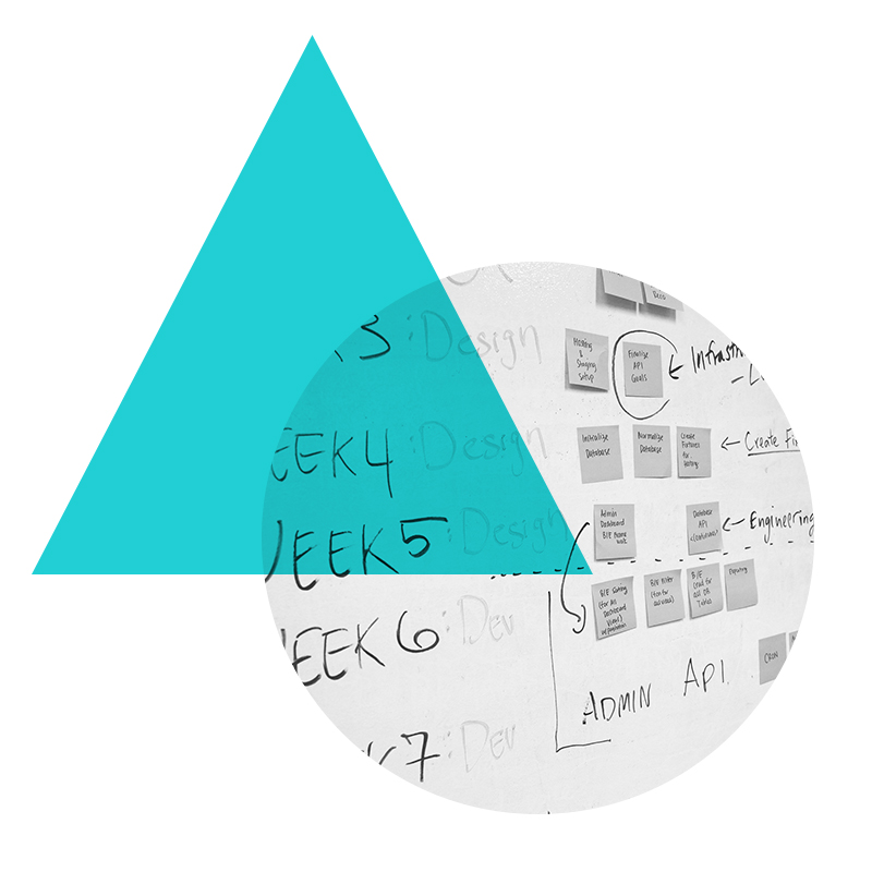 program_management.png