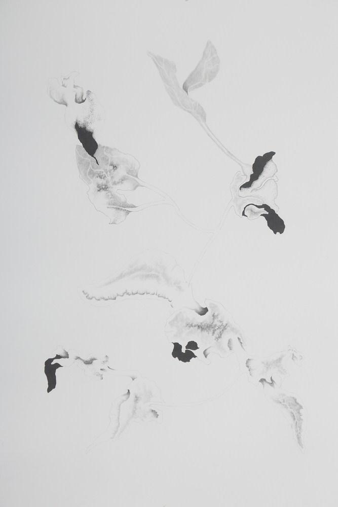 "Apnavi Makanji | Untitled | Graphite on arches paper | 30"" x 22"" | 2018"