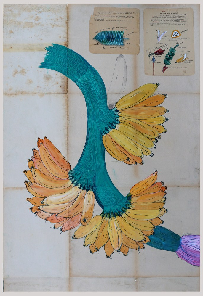"""Shailesh BR 