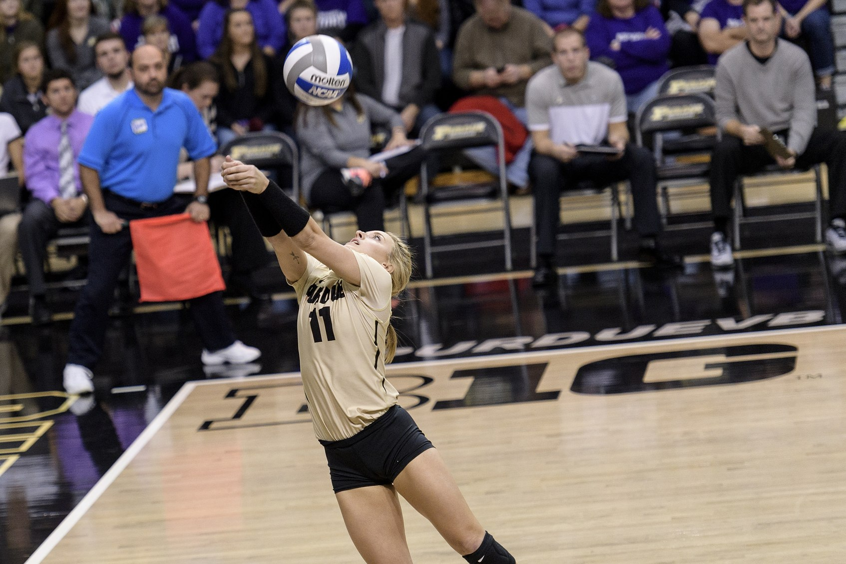 Damler got a number of key digs against Iowa; might have to see about capping some of those.