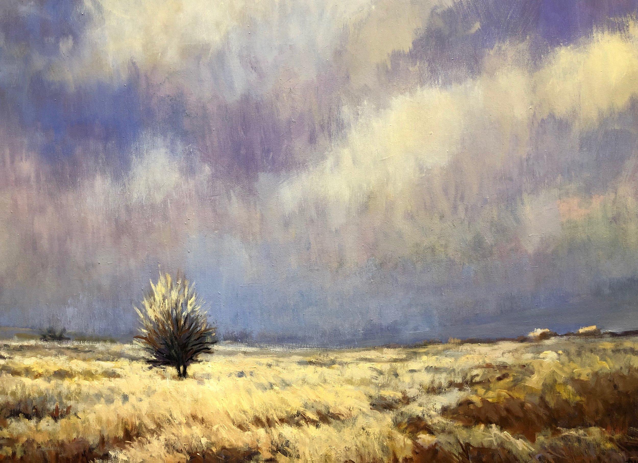 Roberta Barnes -  Autumn Mist , 2018  Halsey, NE