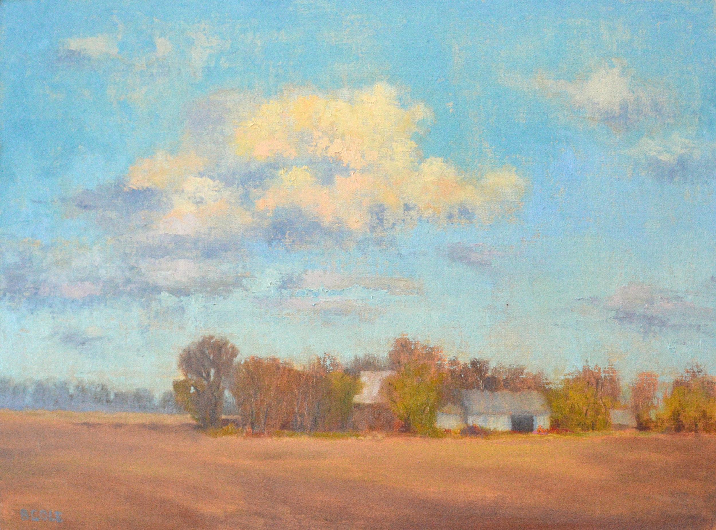 Beth Cole -  Fallow , 2019  Merna, NE