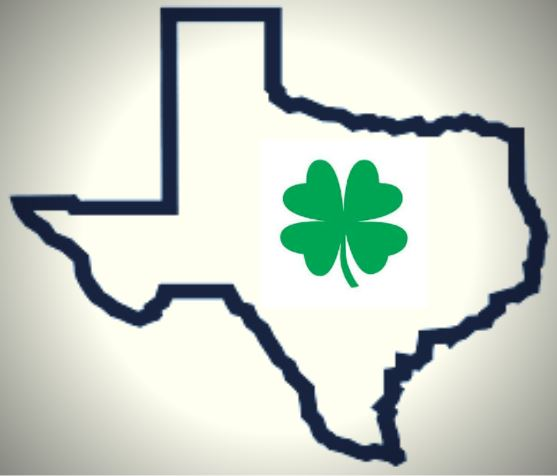 irish texas.JPG