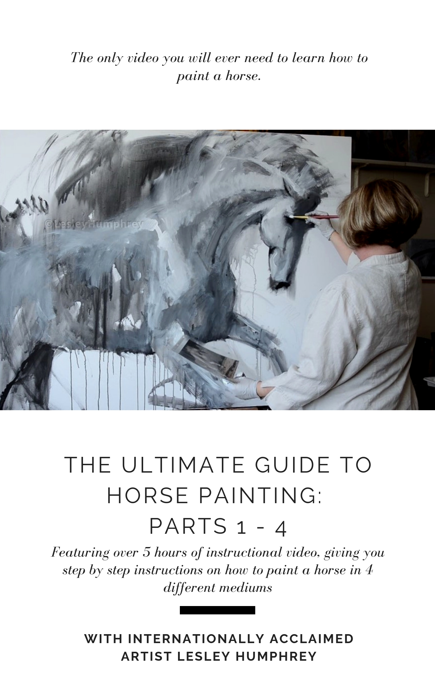 THE ULTIMATE GUIDE TO HORSE PAINTING (2).jpg