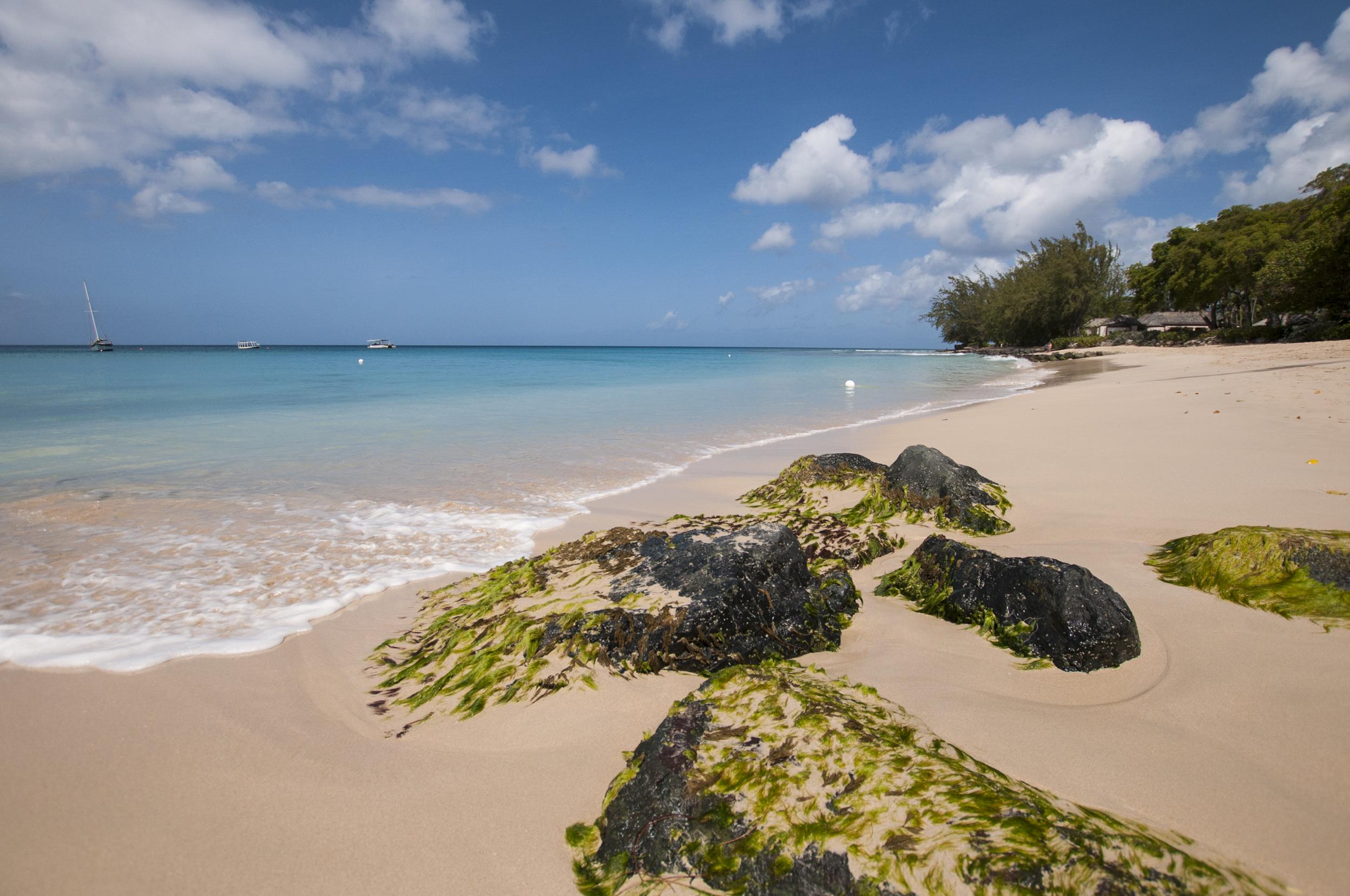 Barbados16-68.jpg