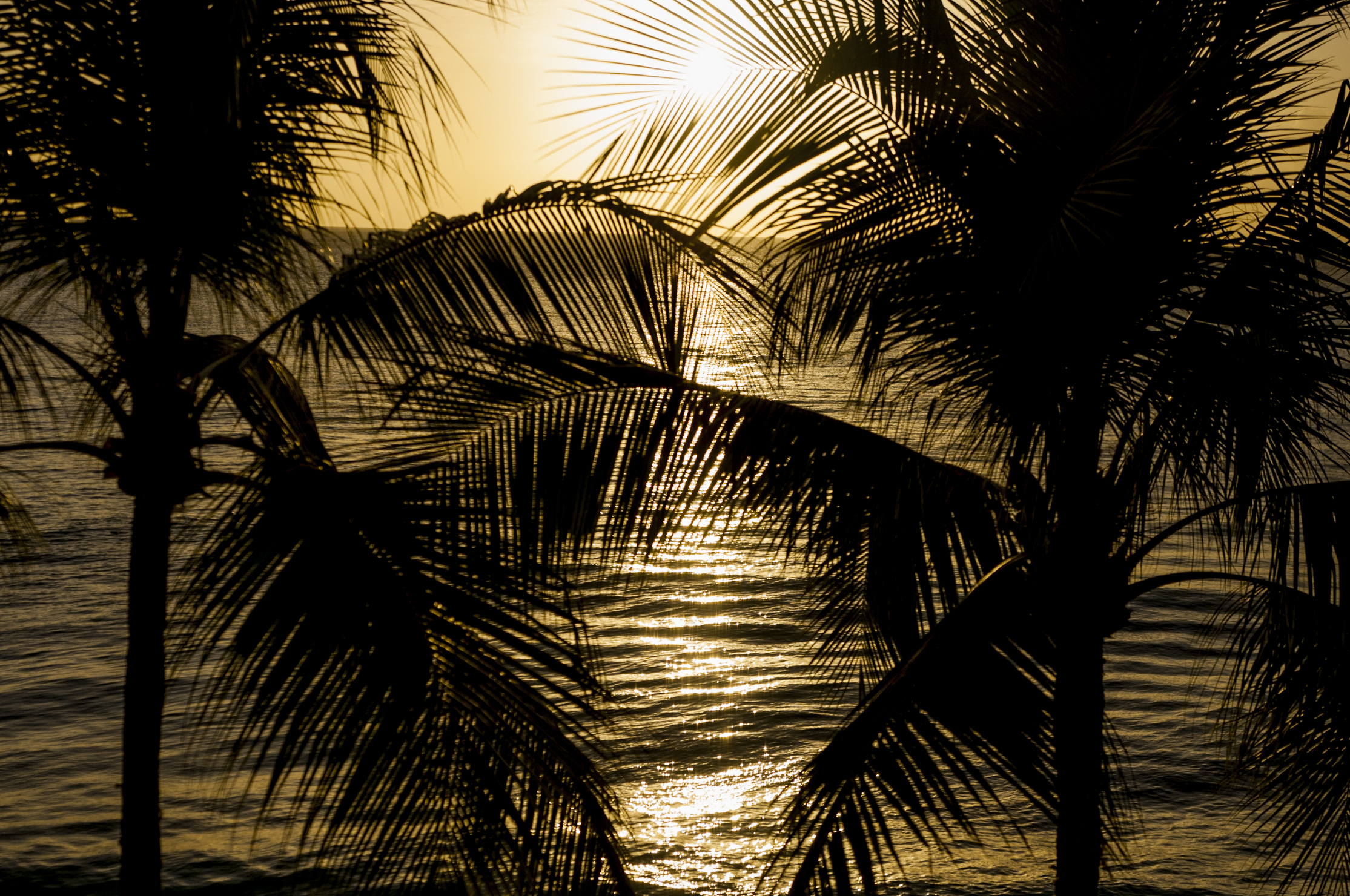 Barbados16-58.jpg