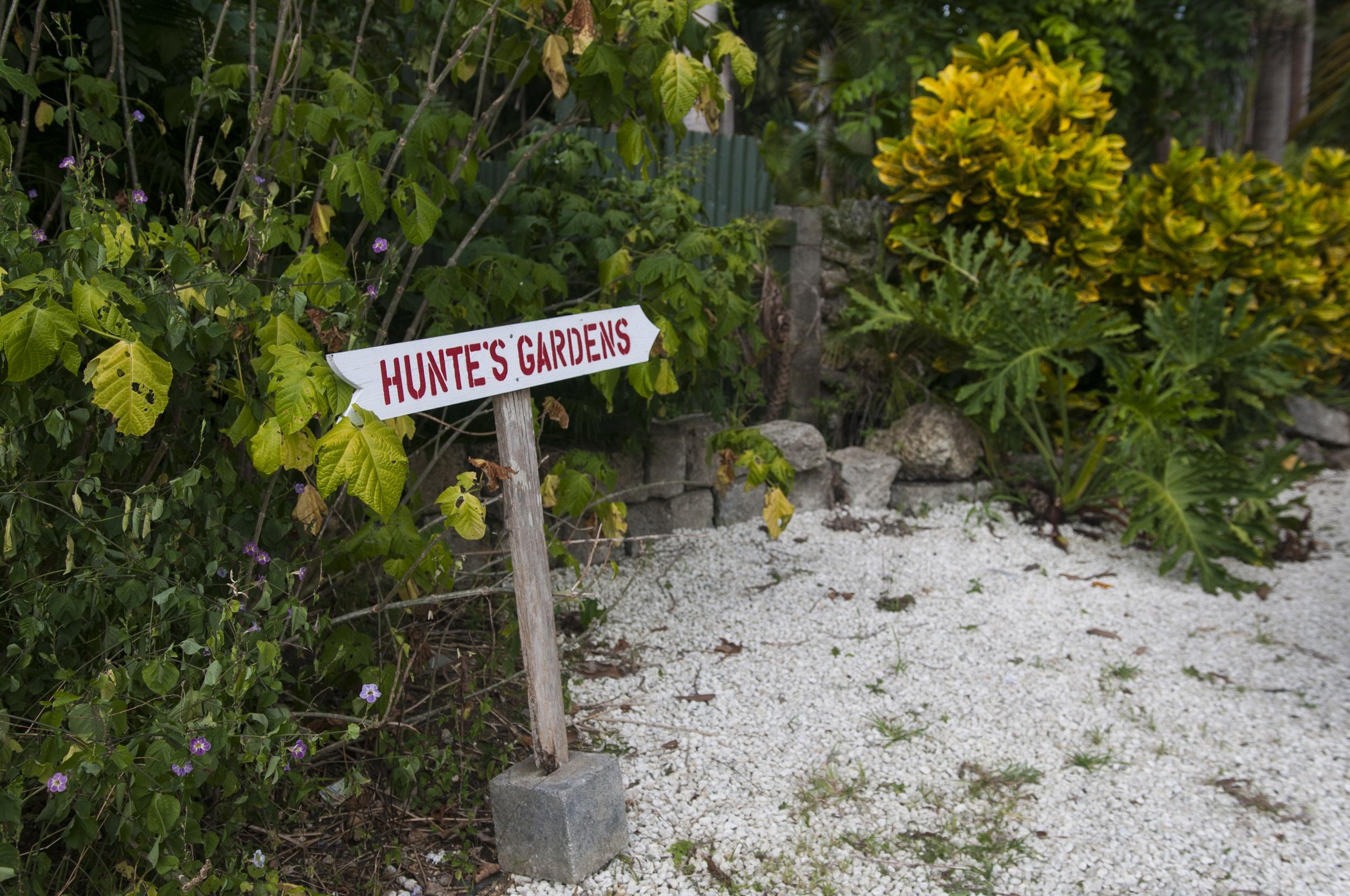 Barbados16-109.jpg