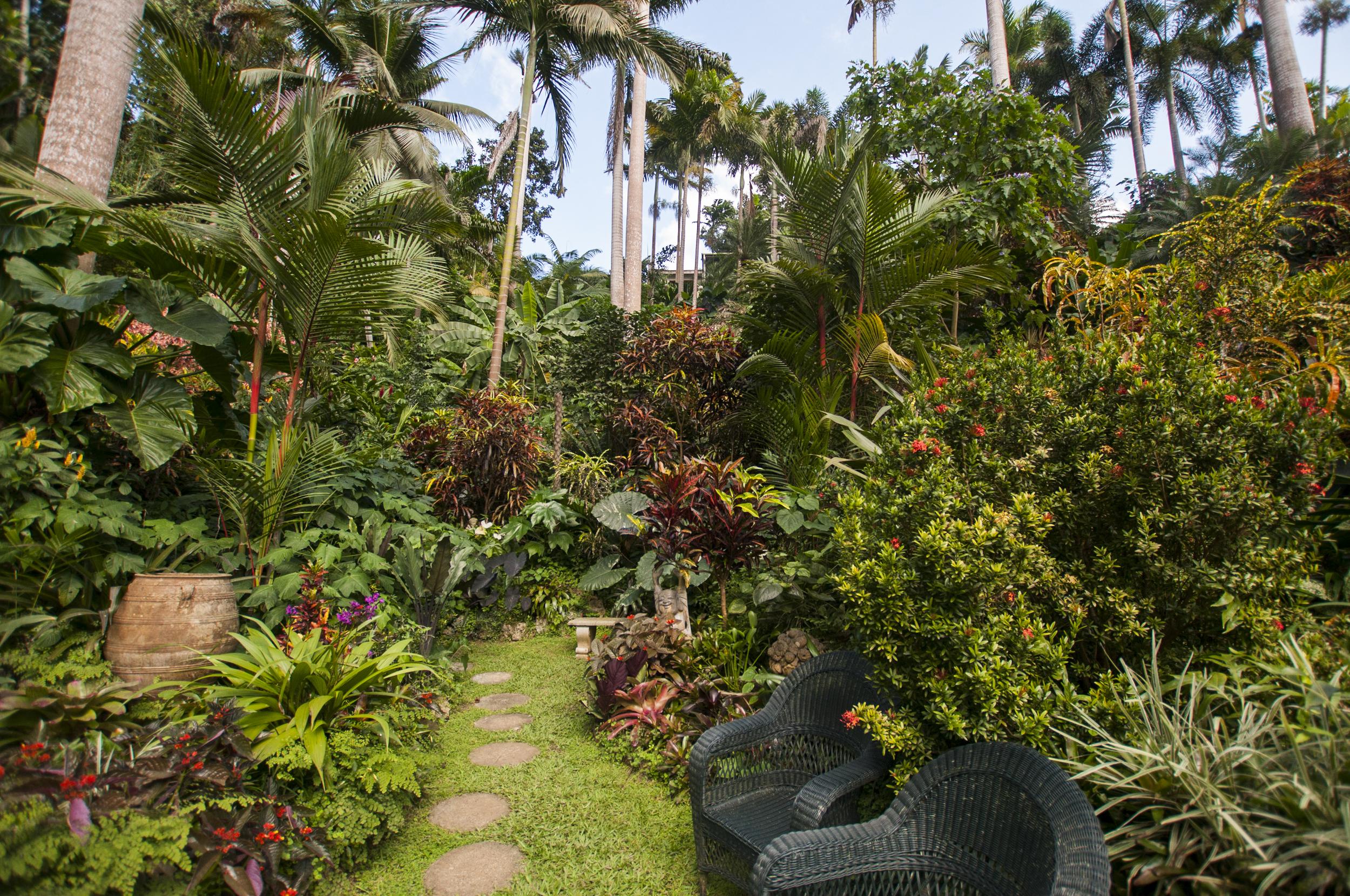 Barbados16-128.jpg