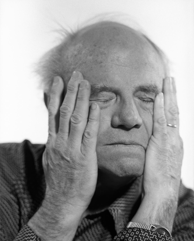 James Rosenquist, Pop Artist
