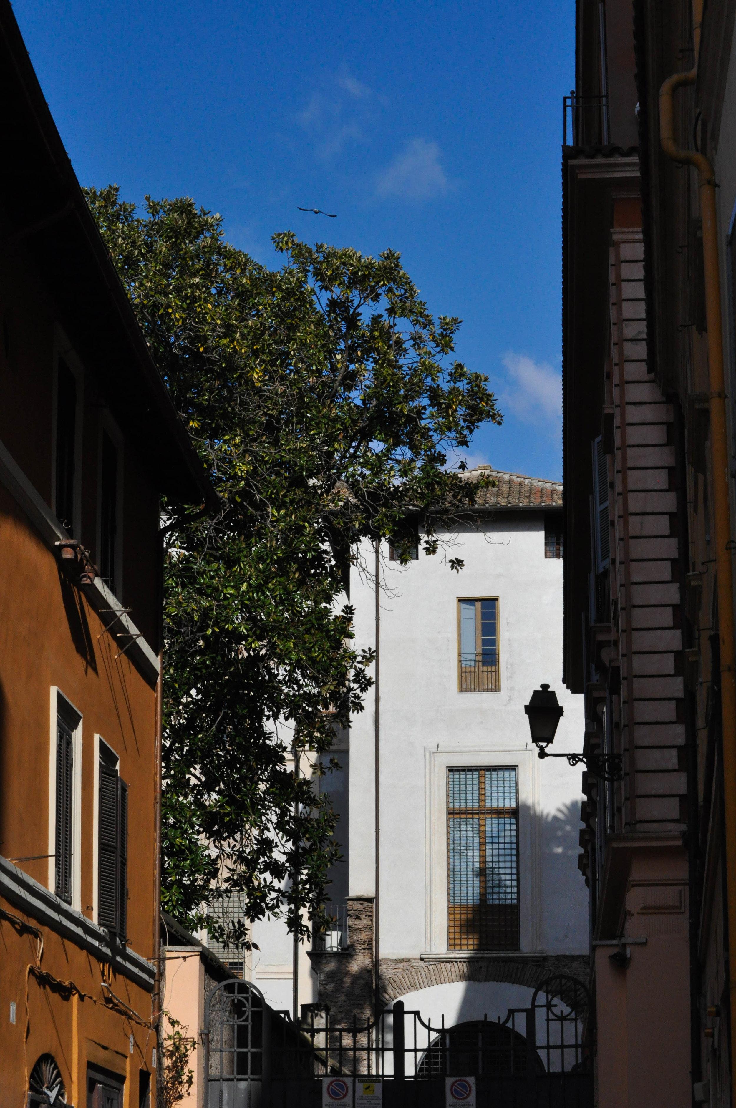 rome-128.jpg