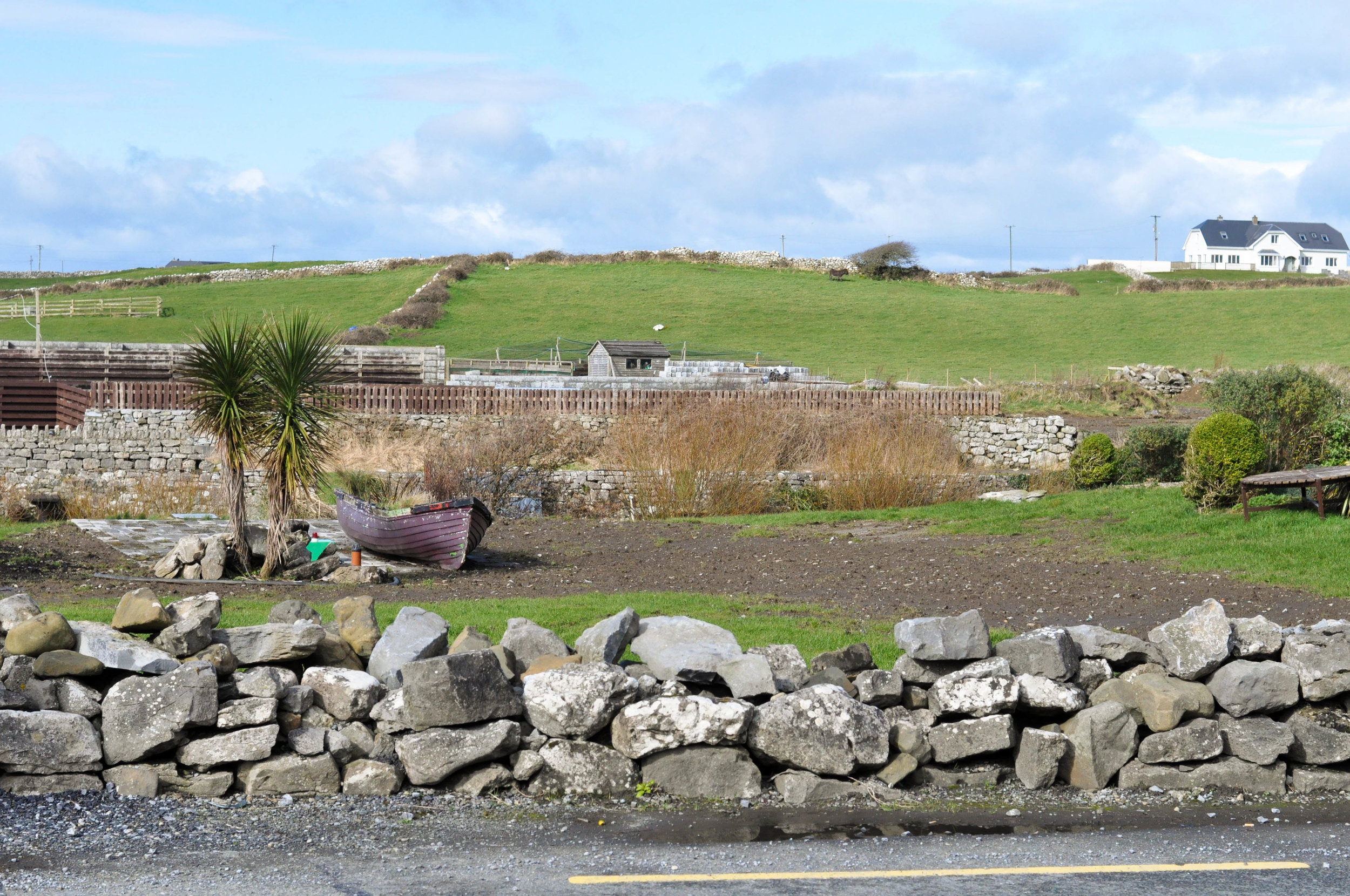 Ireland 2-40.jpg