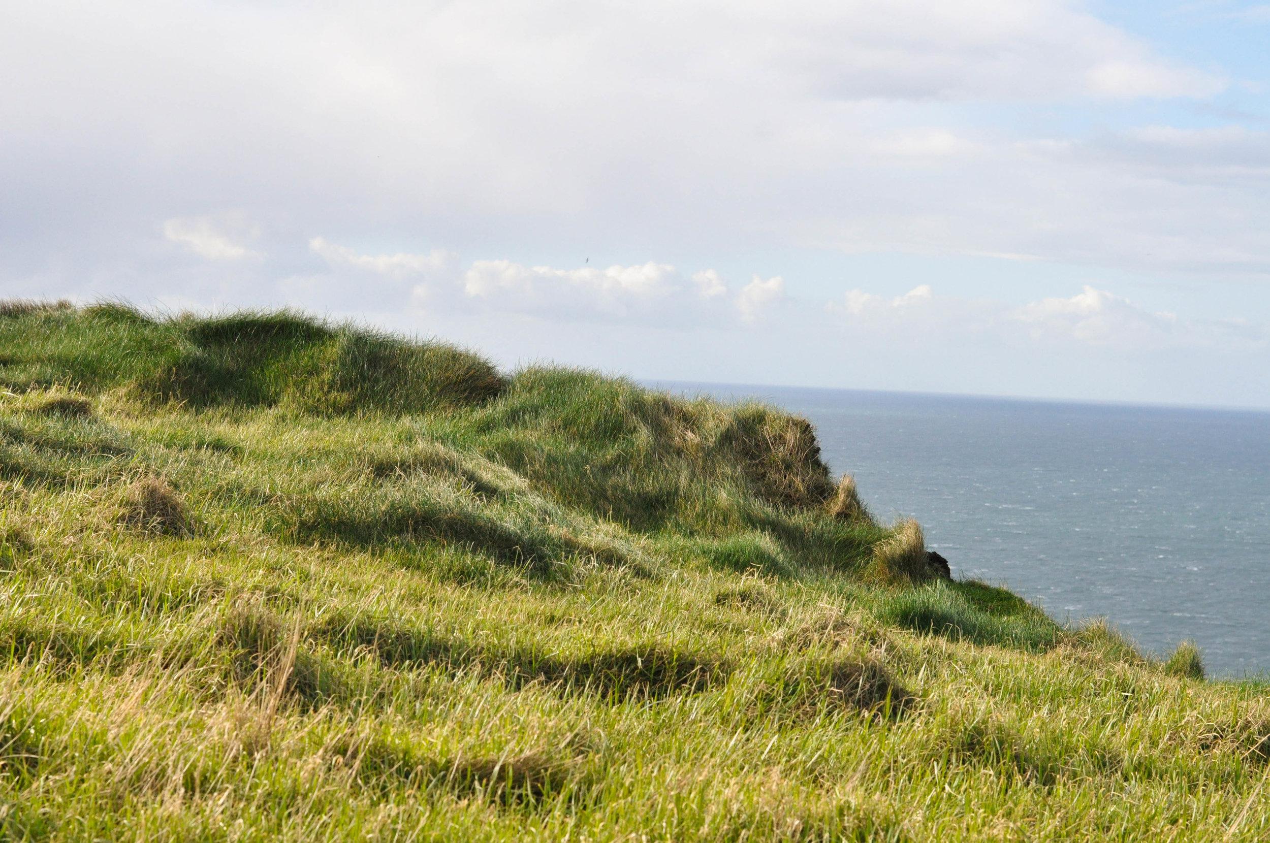 Ireland 2-103.jpg