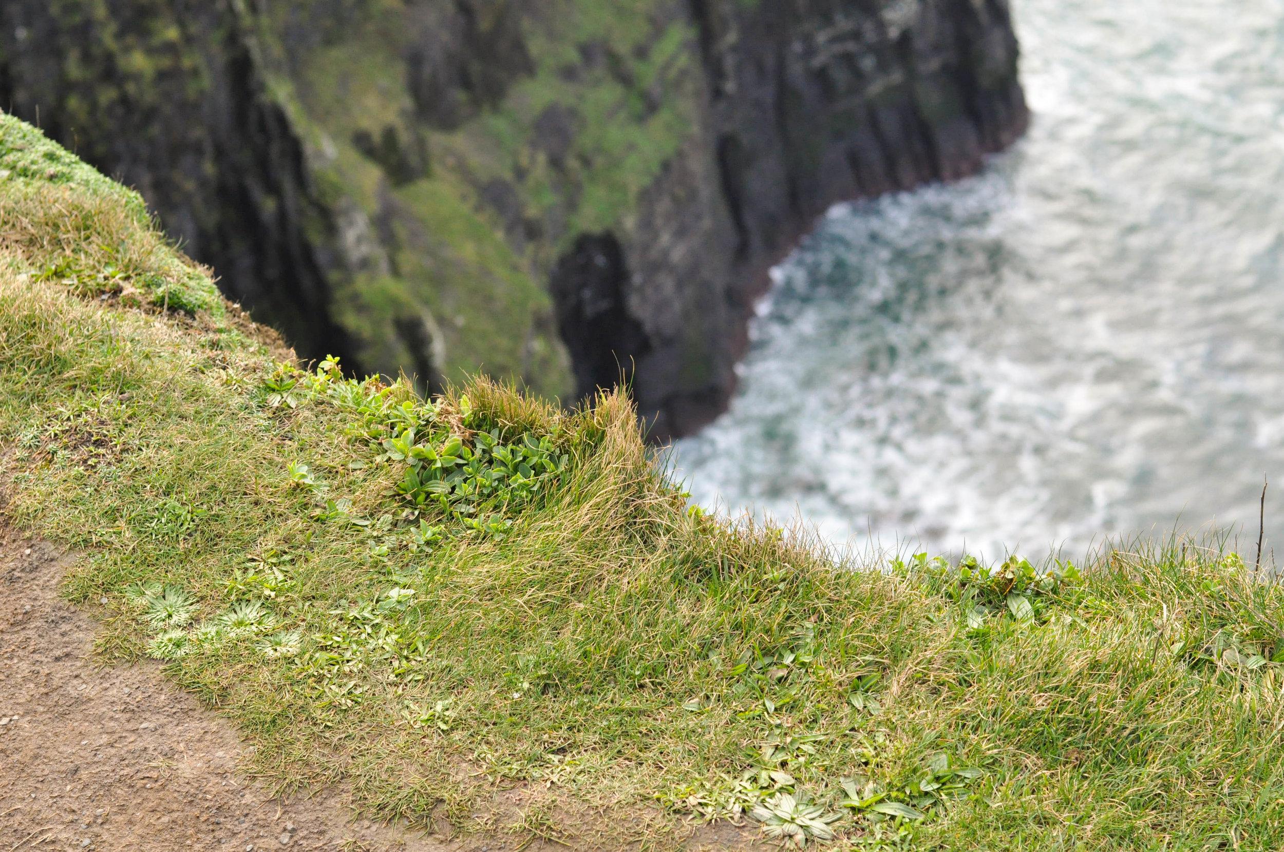 Ireland 2-140.jpg