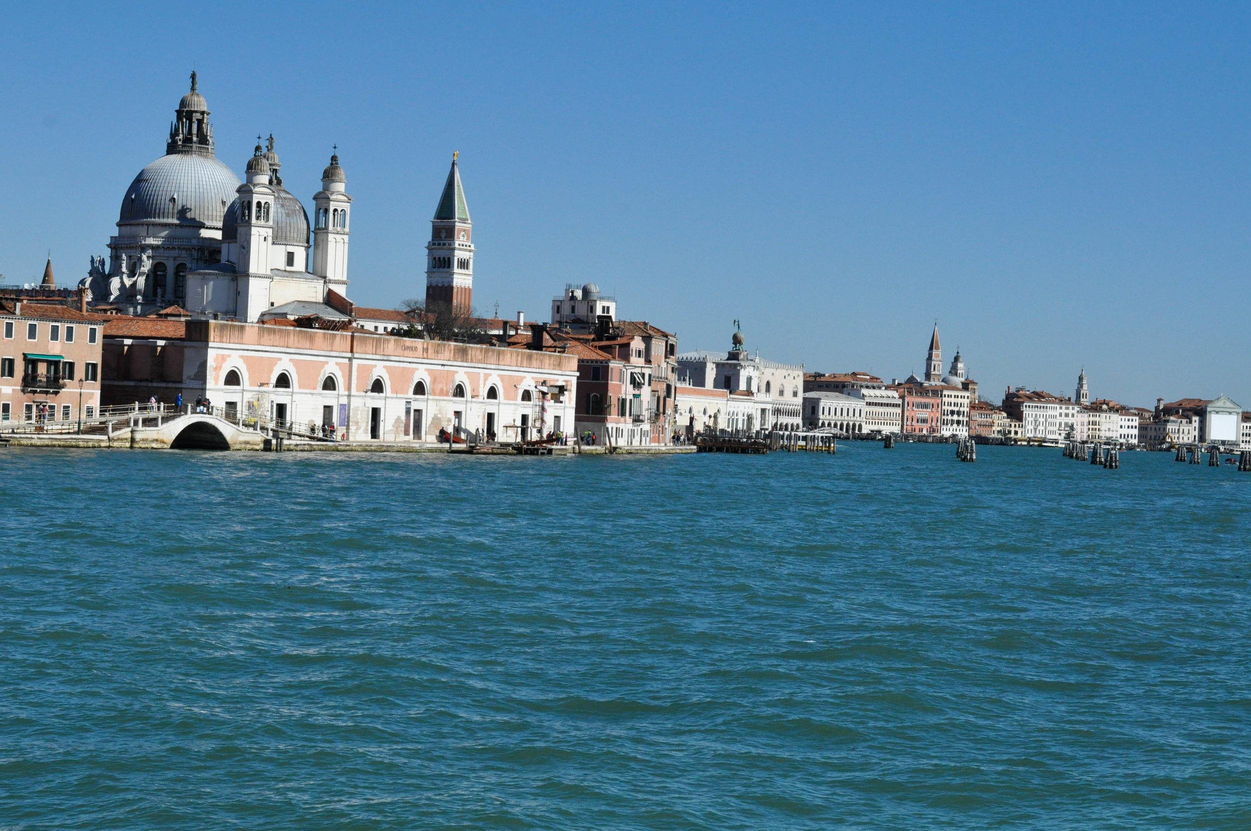 Venice Web-12.jpg