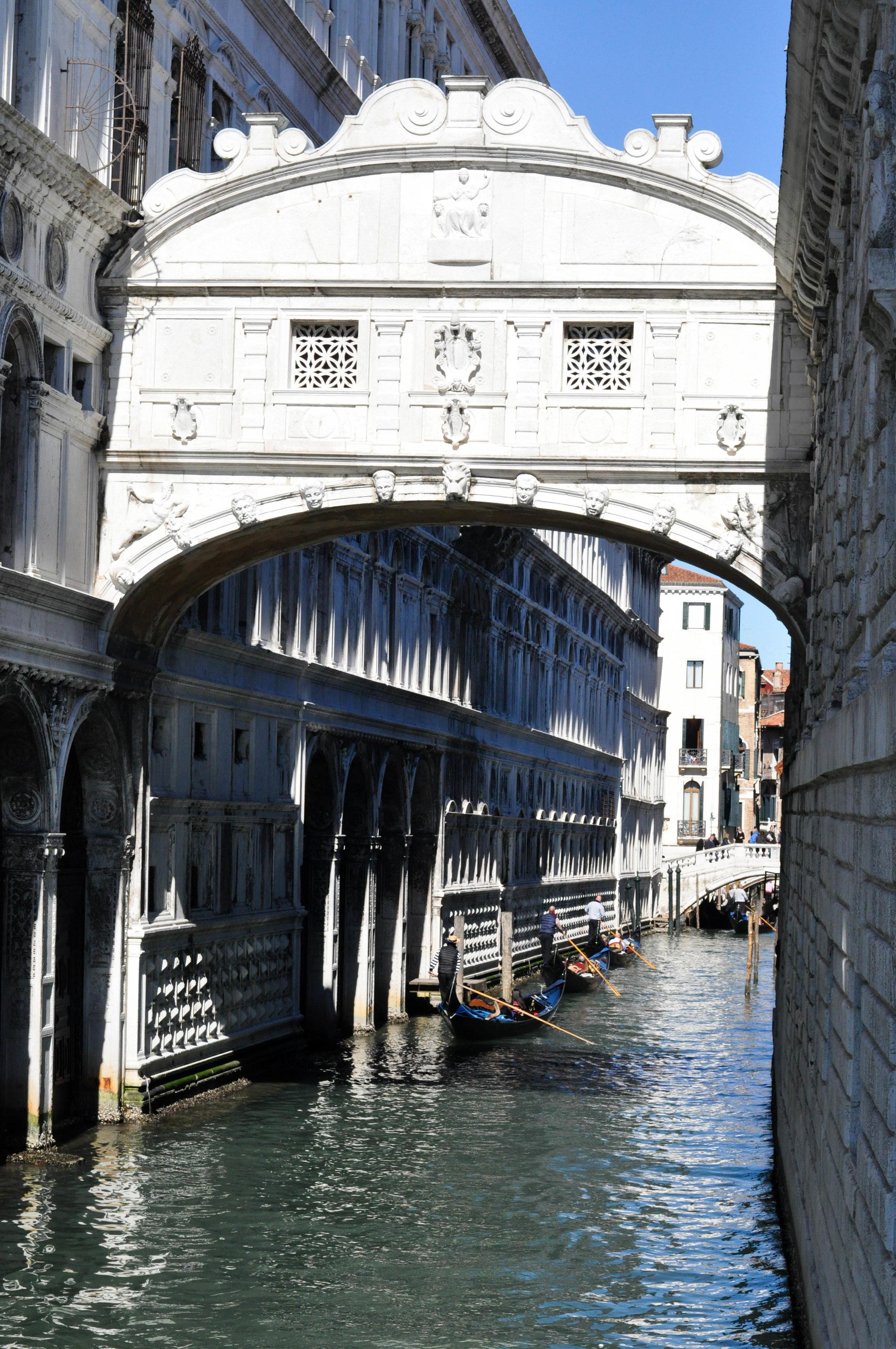 Venice Web-22.jpg