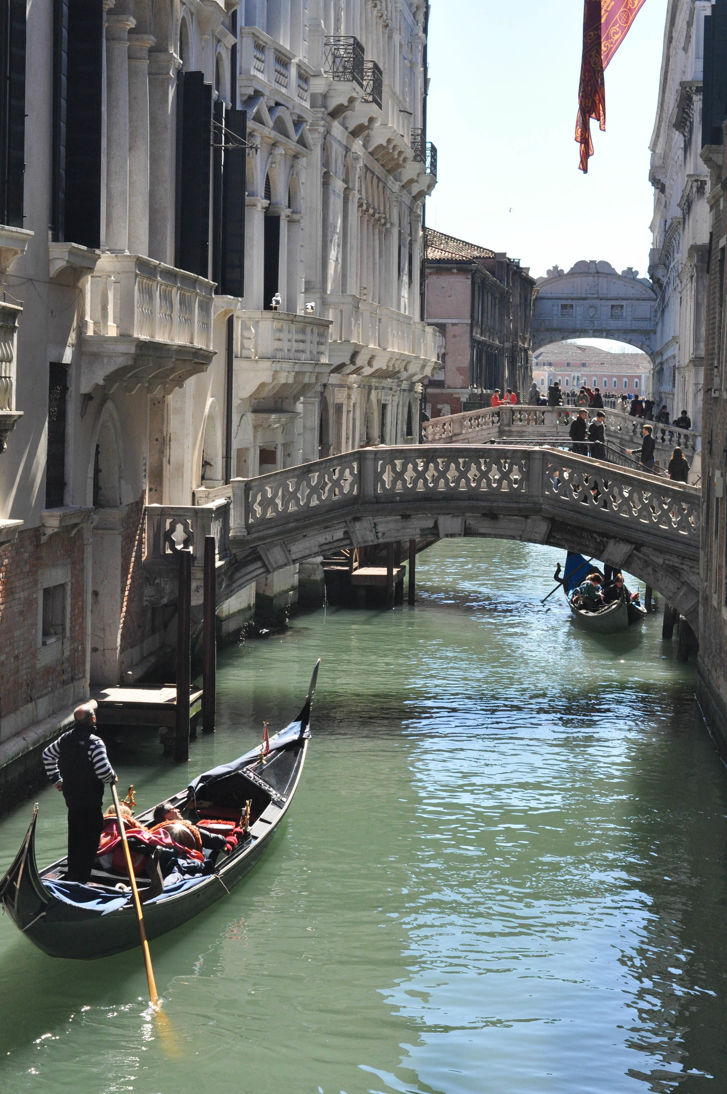 Venice Web-38.jpg