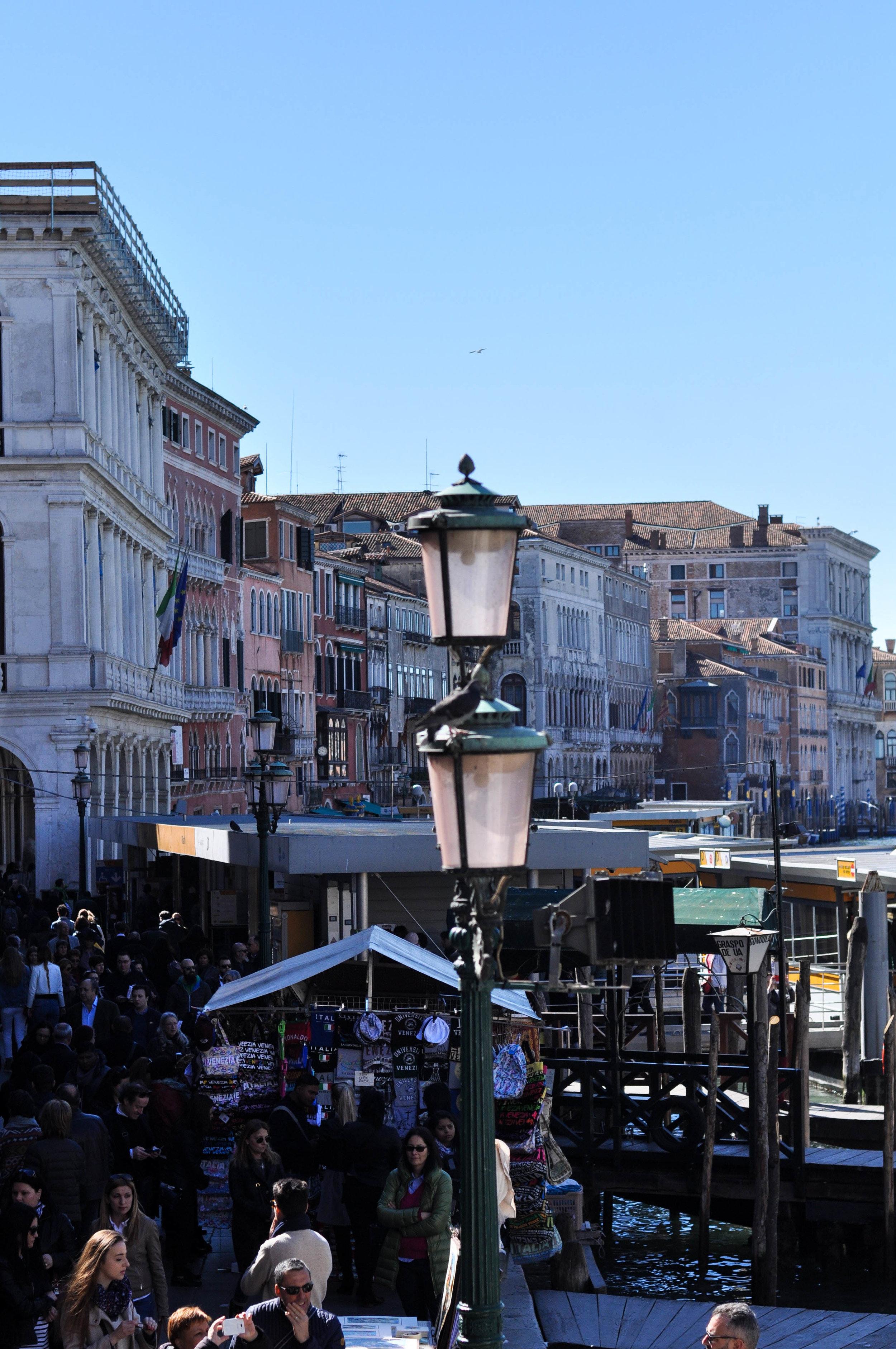 Venice Web-74.jpg