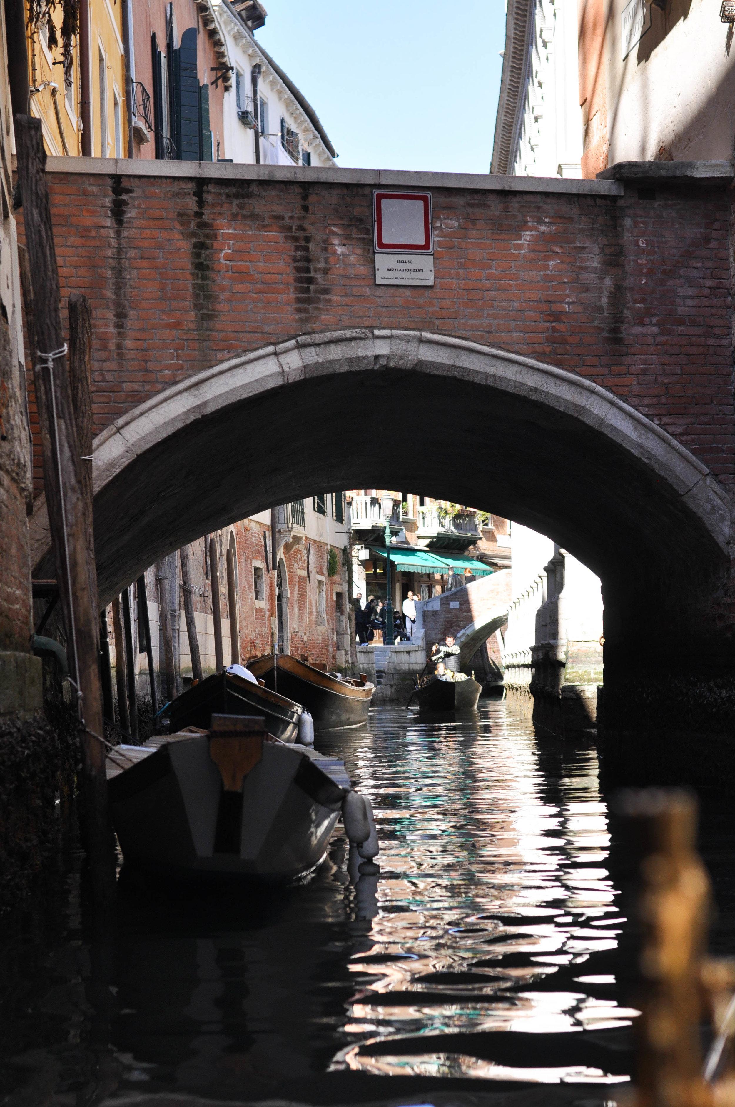 Venice Web-89.jpg
