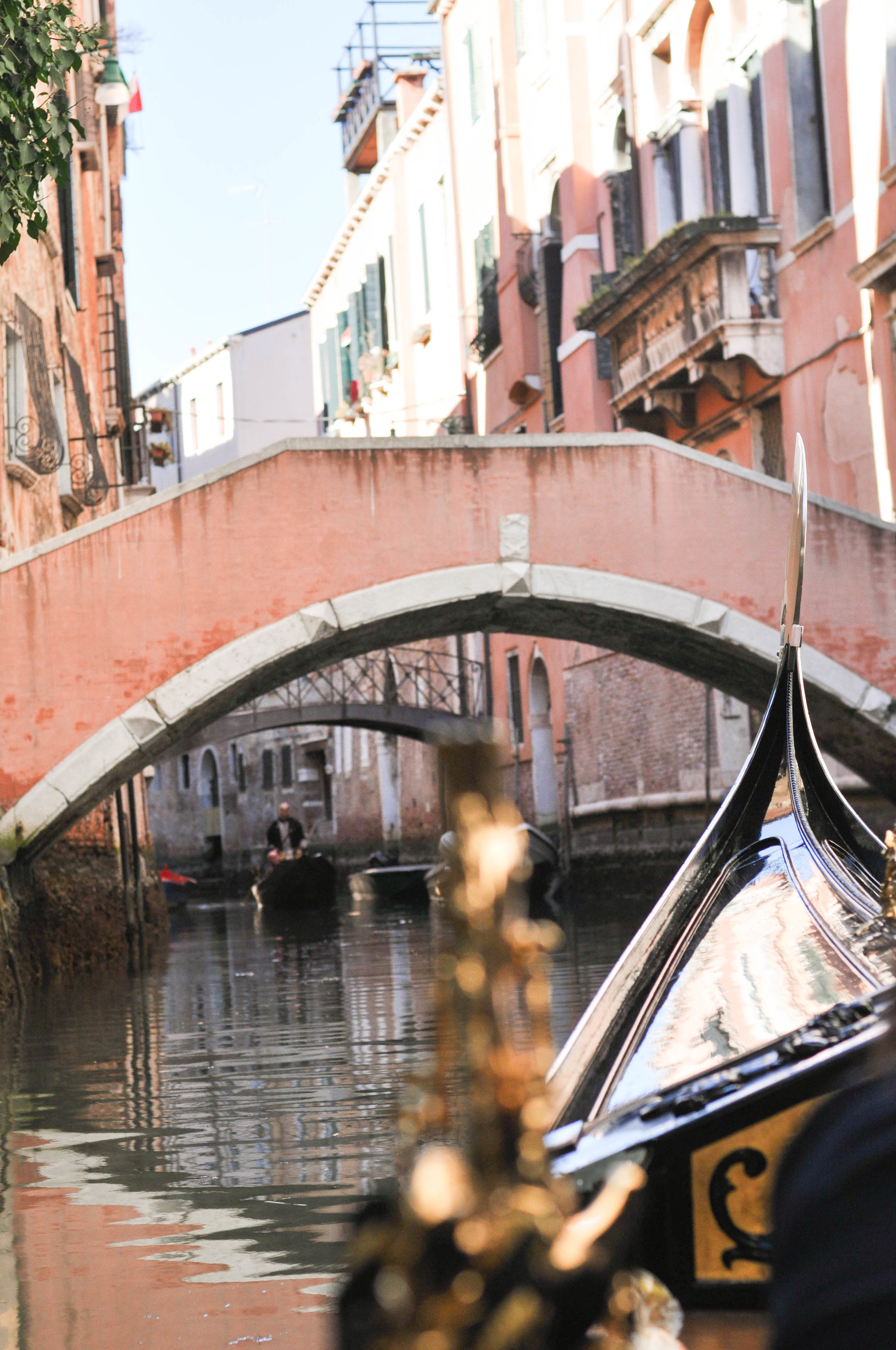 Venice Web-93.jpg