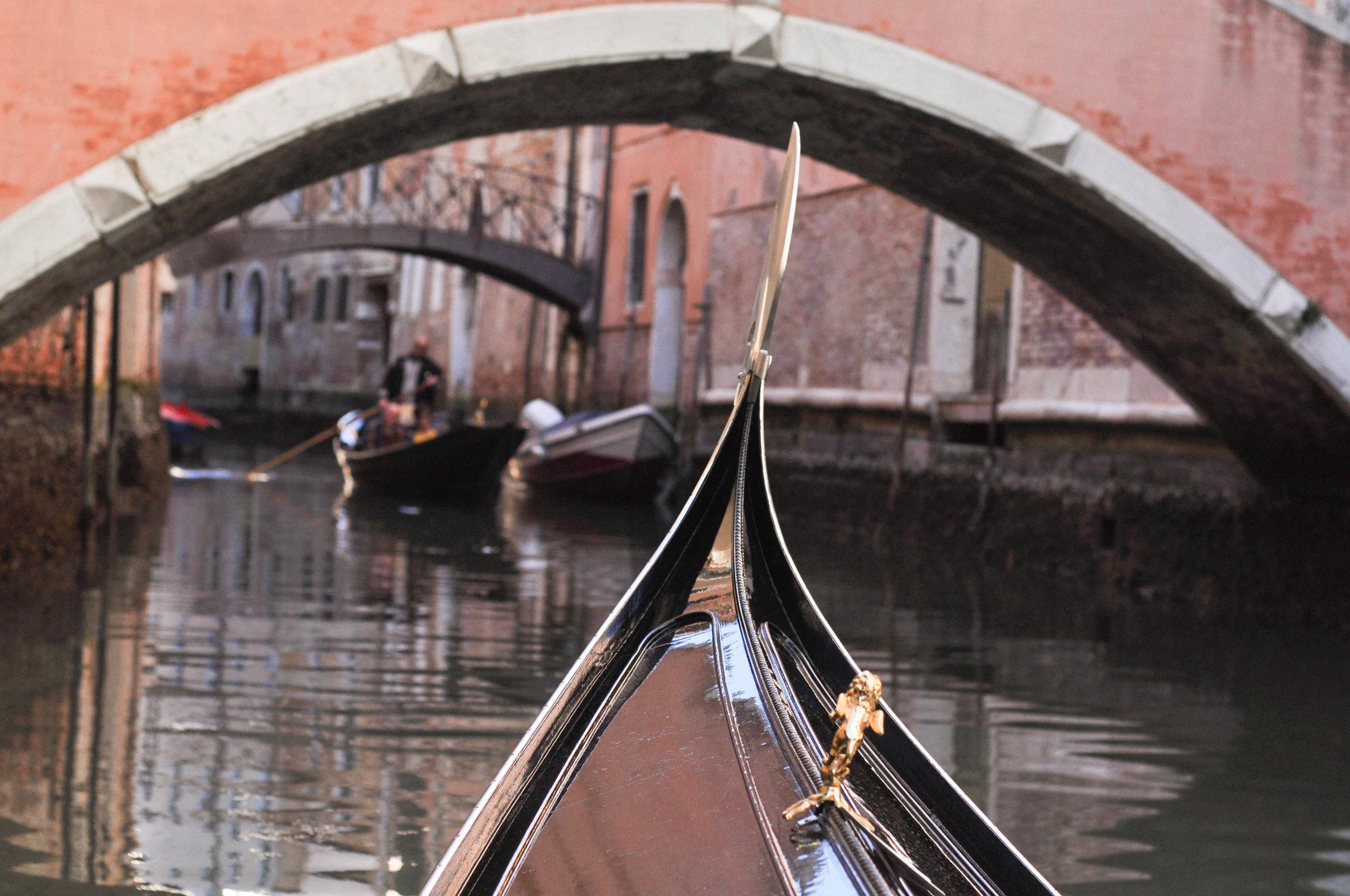 Venice Web-95.jpg