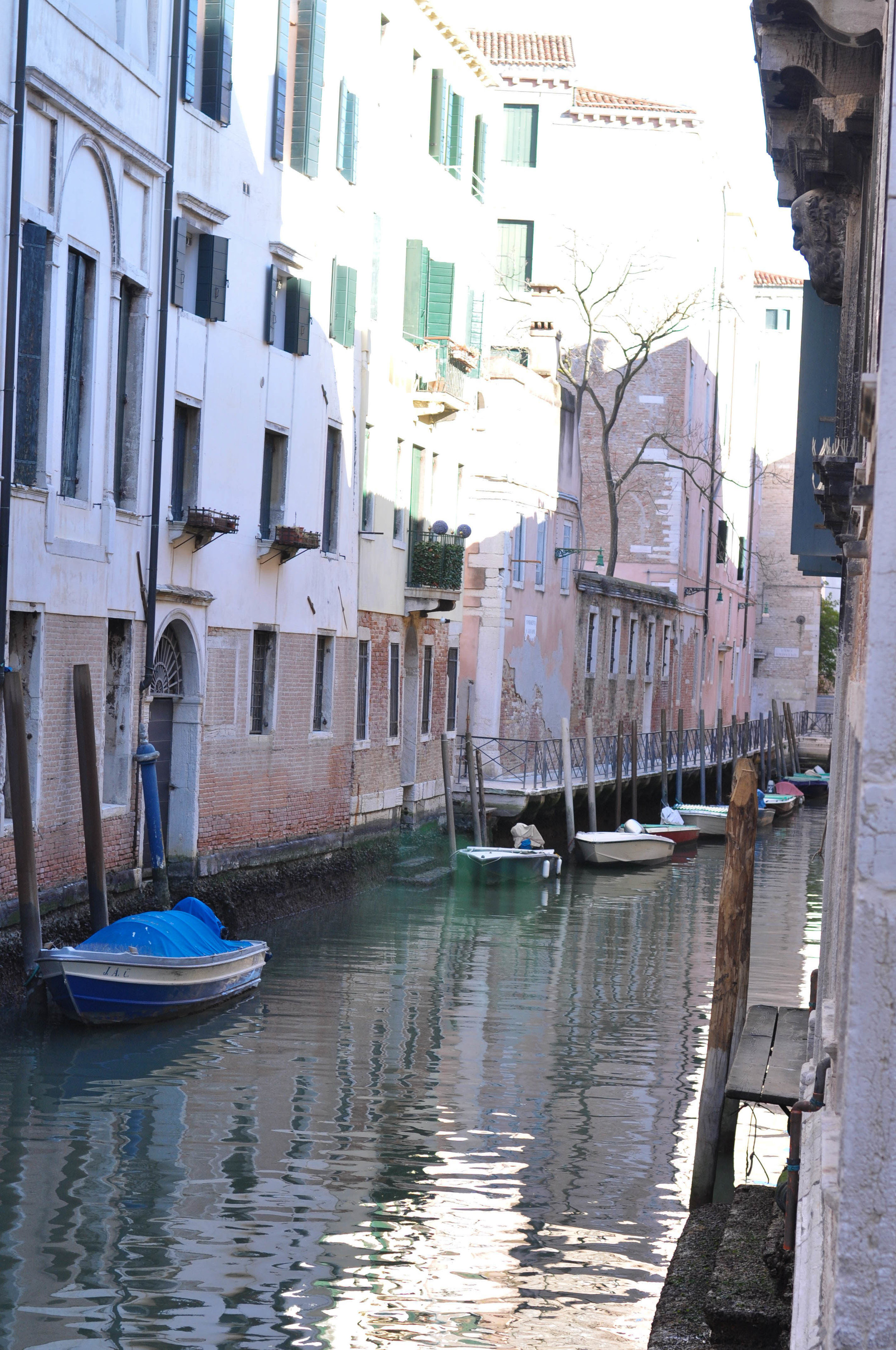 Venice Web-125.jpg