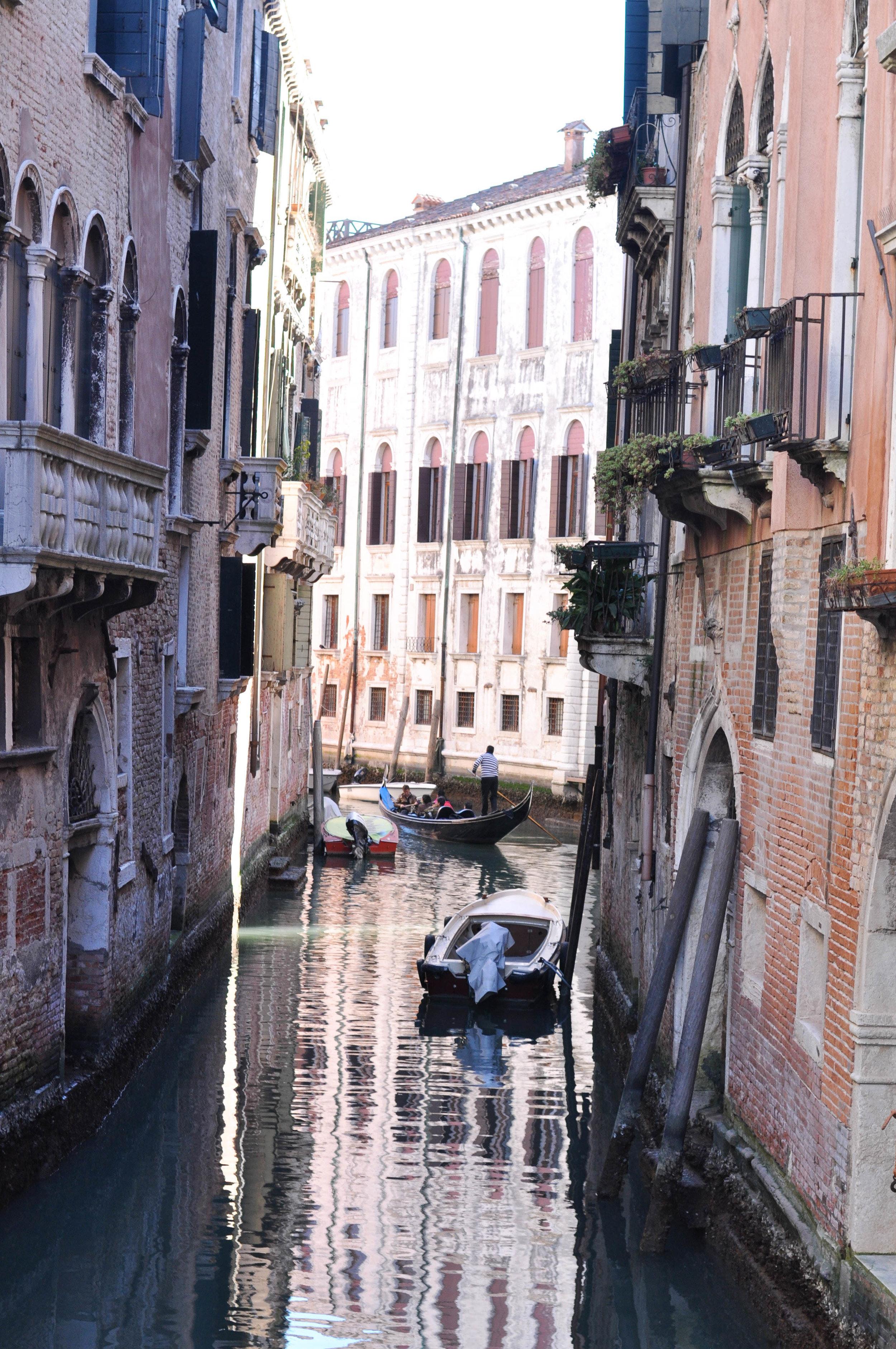 Venice Web-124.jpg
