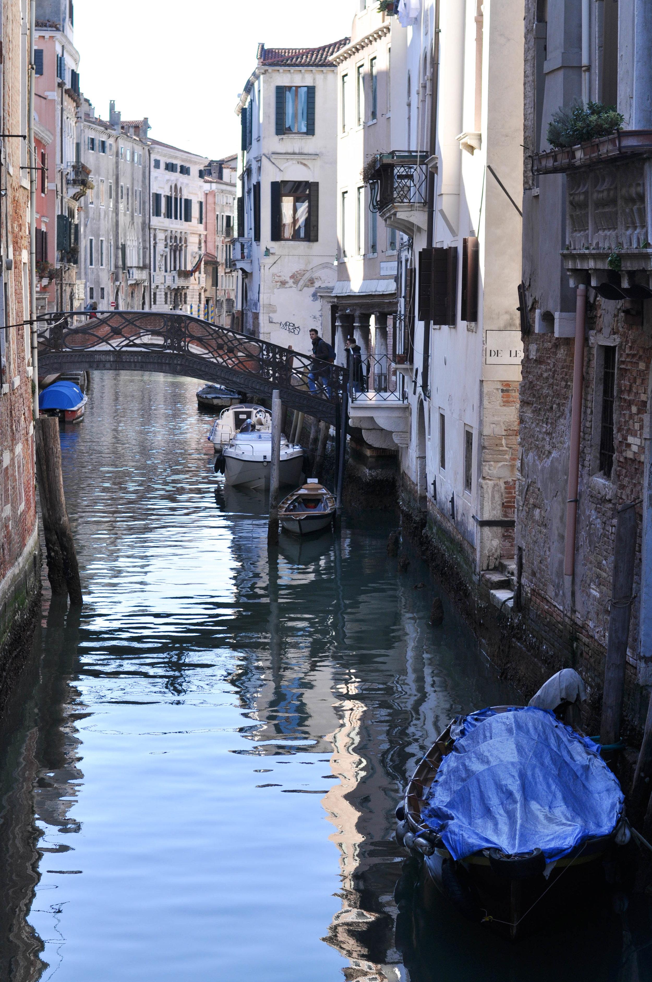 Venice Web-129.jpg