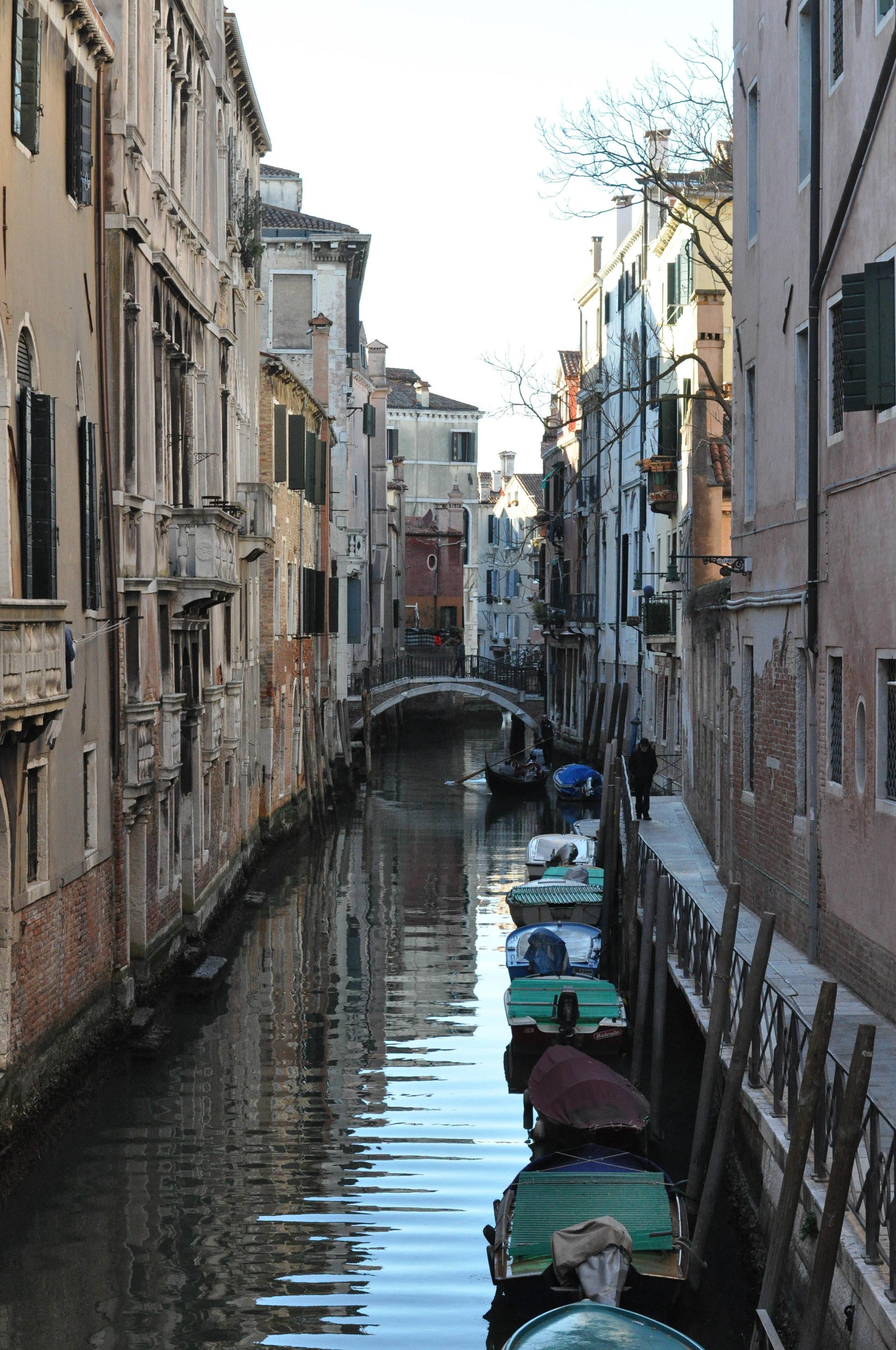 Venice Web-143.jpg