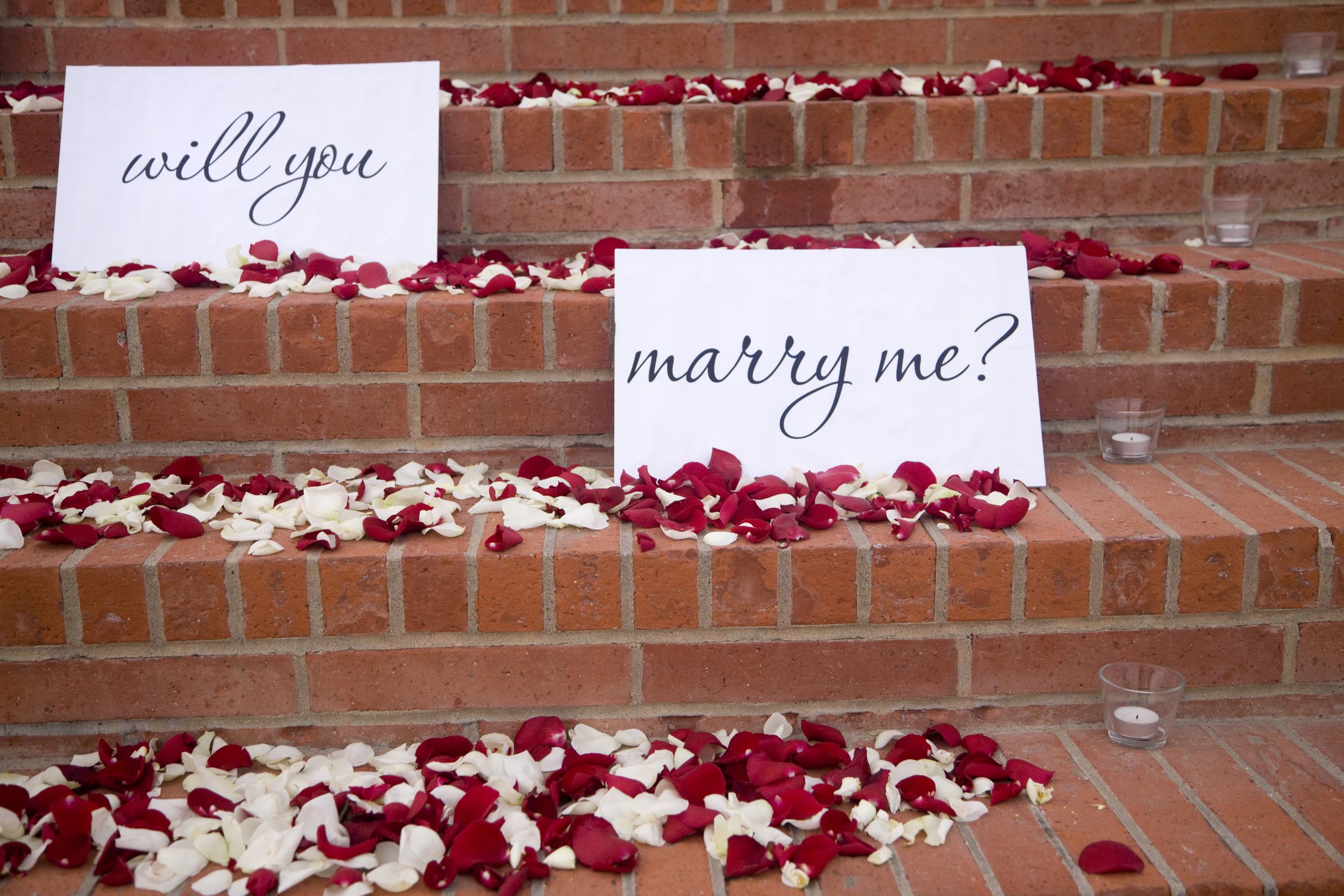 Proposal-lettering.jpg