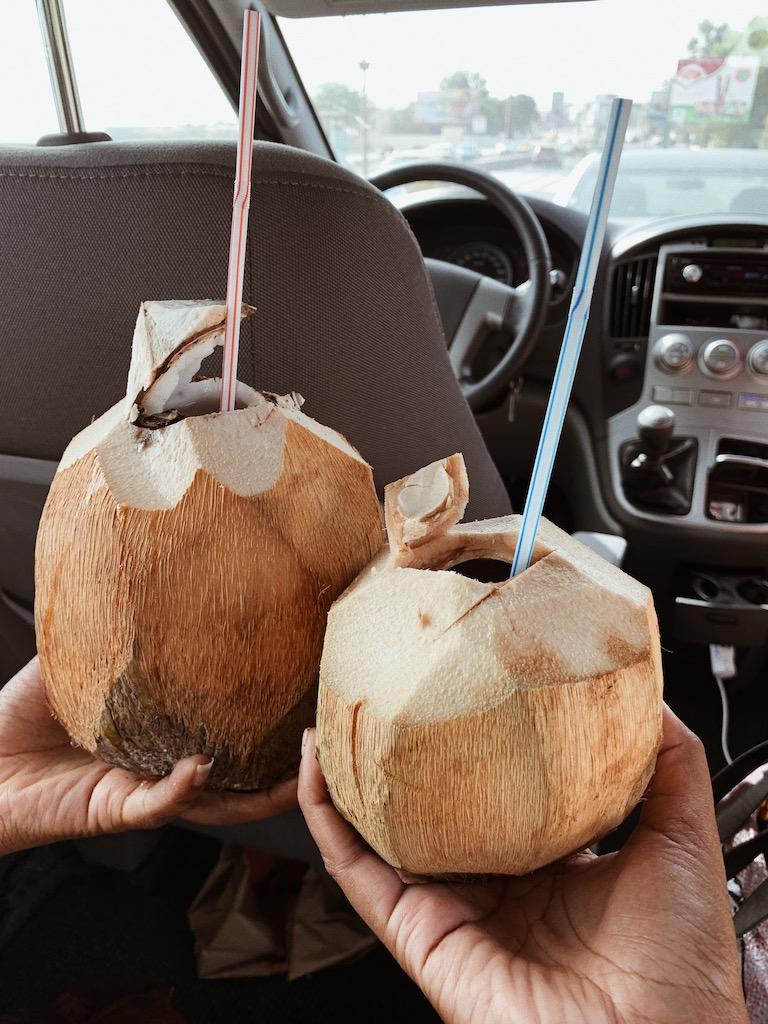 coconuts senegal 2019 teranga retreat.jpg