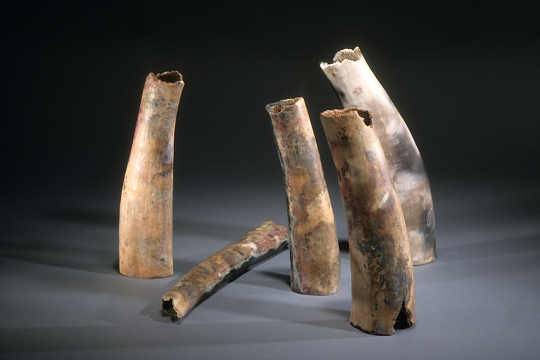 "Standing Vigil ,   1999    clay, kiln- and pit-fired    variable, tallest 18"" h."