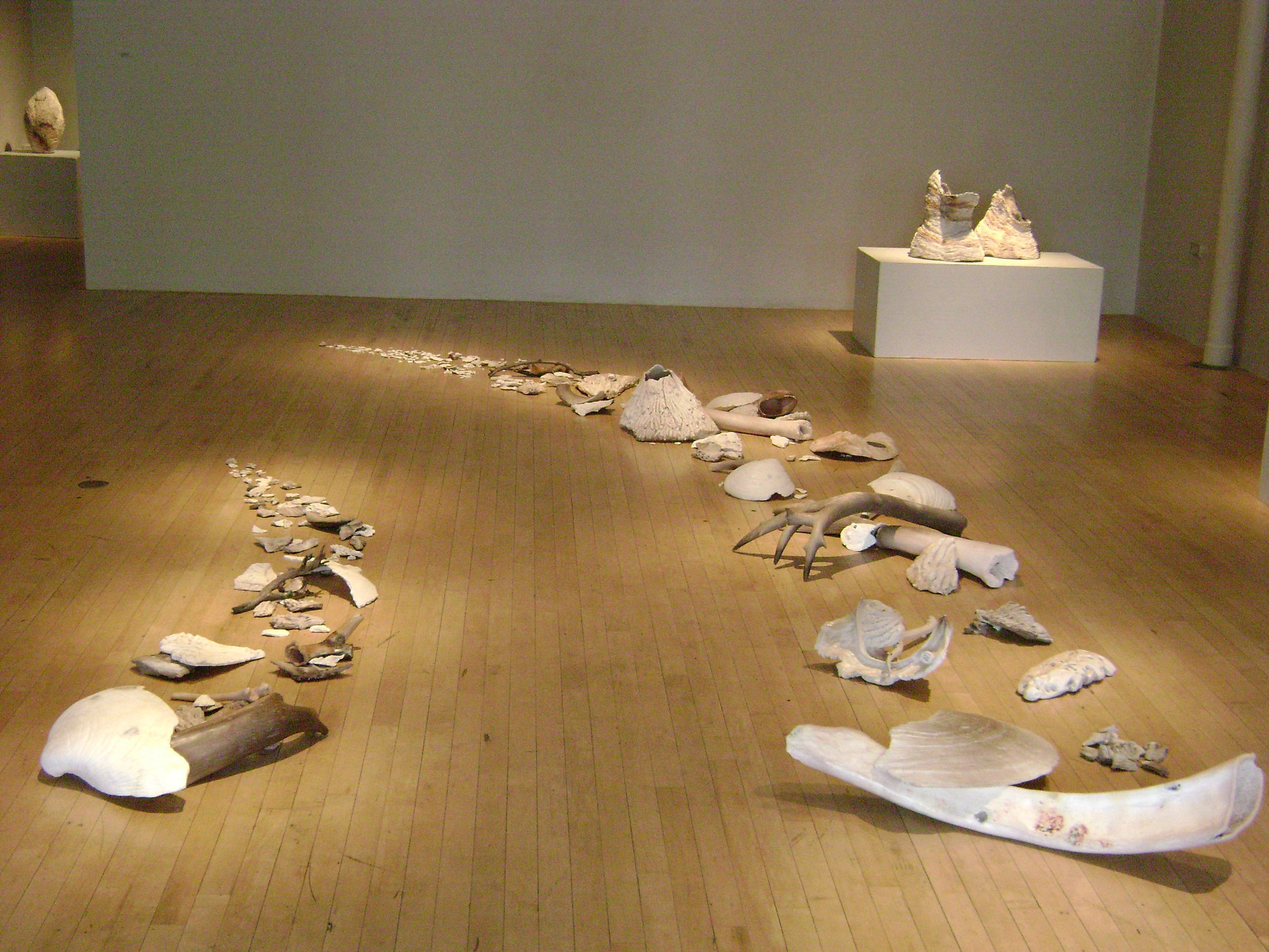 Shorelife/Ebbtide , detail    Catherine Person Gallery, Seattle      Strata, s olo show,  2008