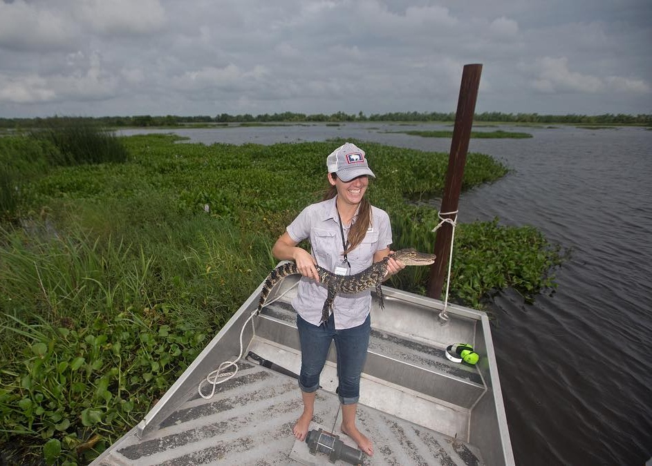 Sara Sneath holds an alligator in a marsh in Jesuit Bend, Louisiana. (Photo by Ted Jackson)