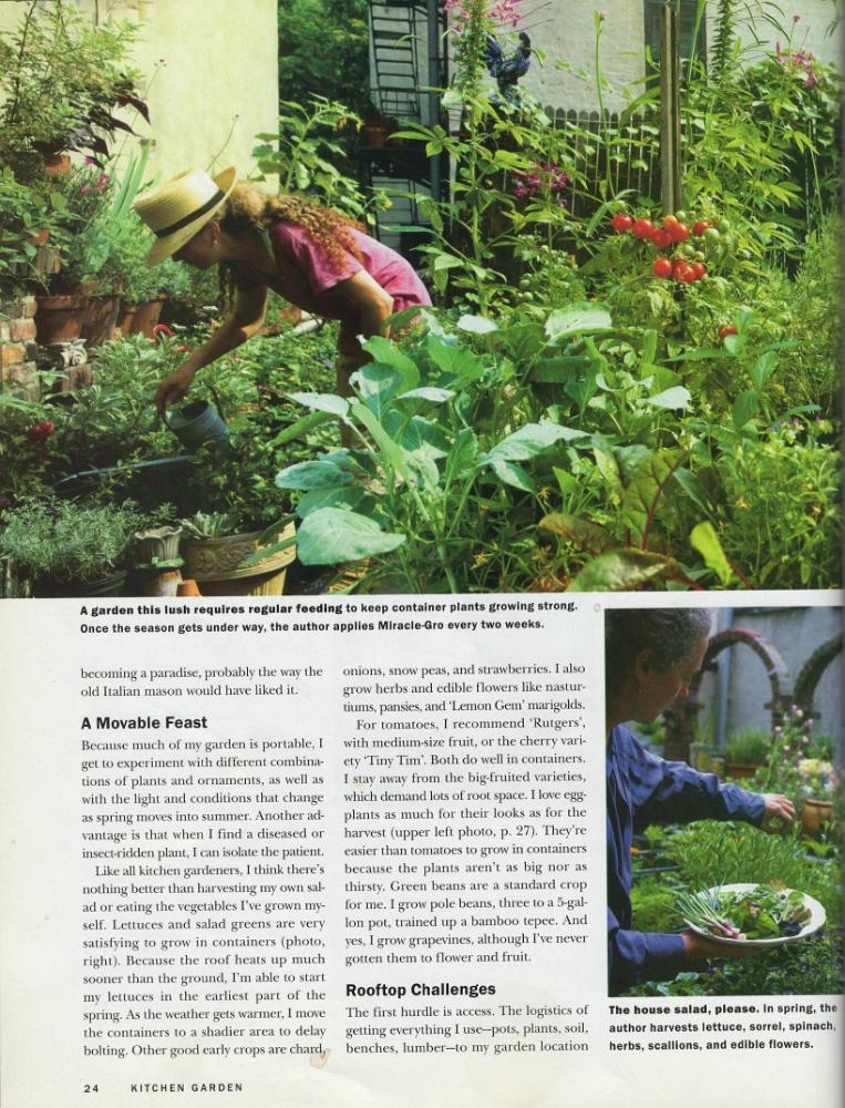 Kitchen Garden, 1997