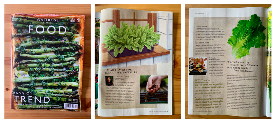 Waitrose Food Magazine - MAY 2019Two-page spread for Waitrose monthly food magazine about growing salad leaves on a sunny windowsill.
