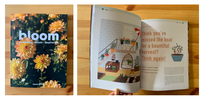 Bloom Magazine - JUNE 2019Four-page spread for Issue 3 of horticultural quarterly, Bloom Magazine about what to sow and grow if you're getting started in June or July.https://www.bloommag.co.uk/