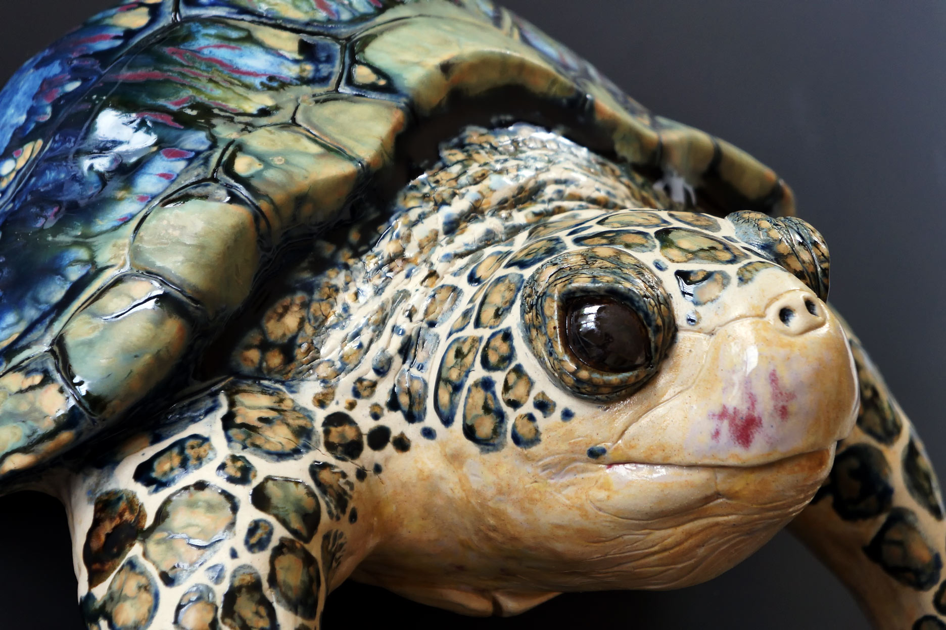 Large wall hanging turtle. 20 inches wide.