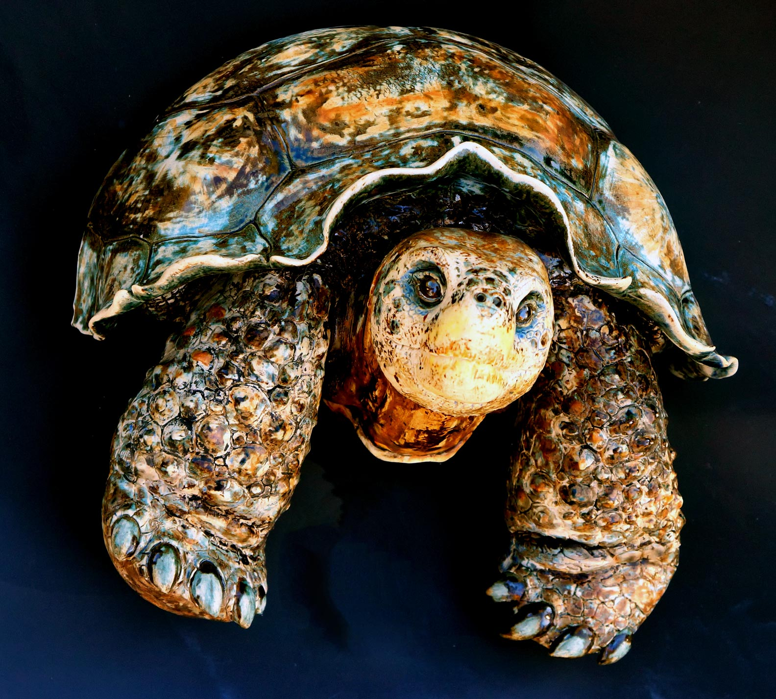 Wall Hanging Galapagos Tortoise, 16 inches wide.