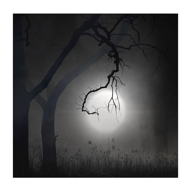 SOLD! Thank you @walkerfineart #moon #moonlight #limitededition #fineartphotography